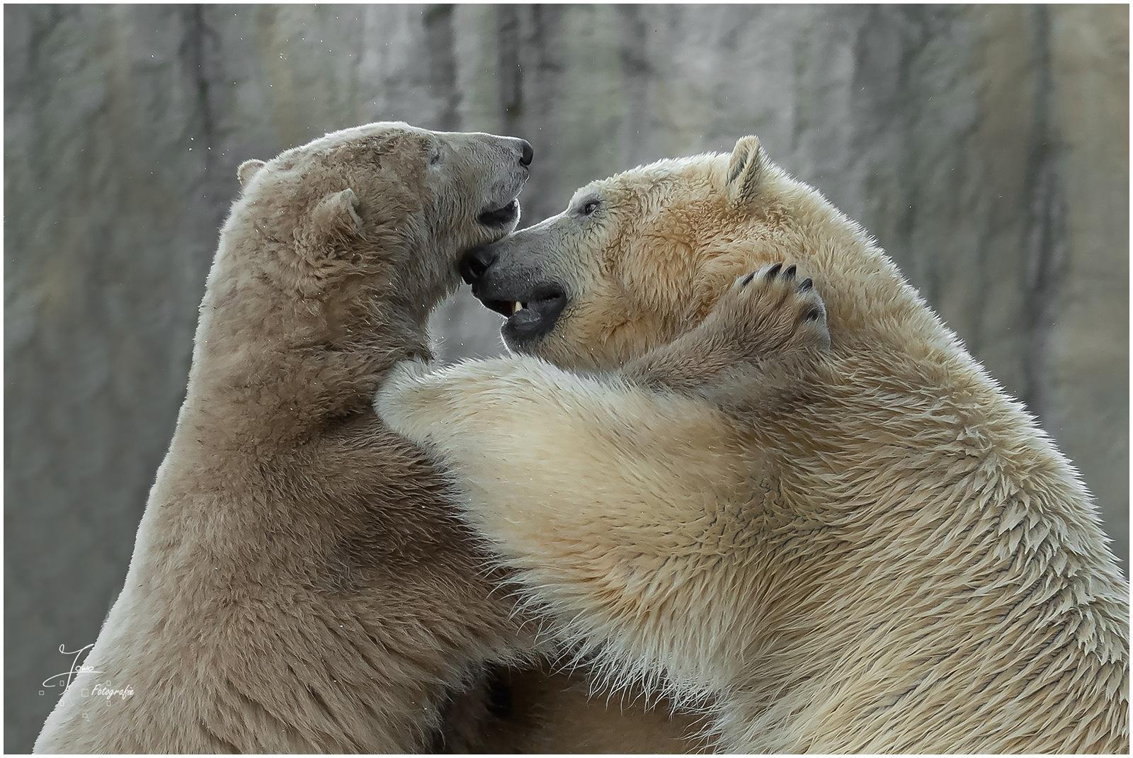 Broer en zus by Nikonsmurf