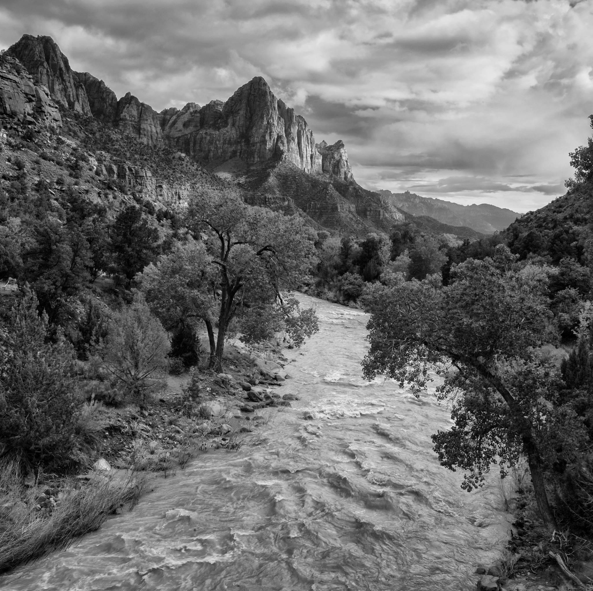 Zion National Park by desmcmahon5