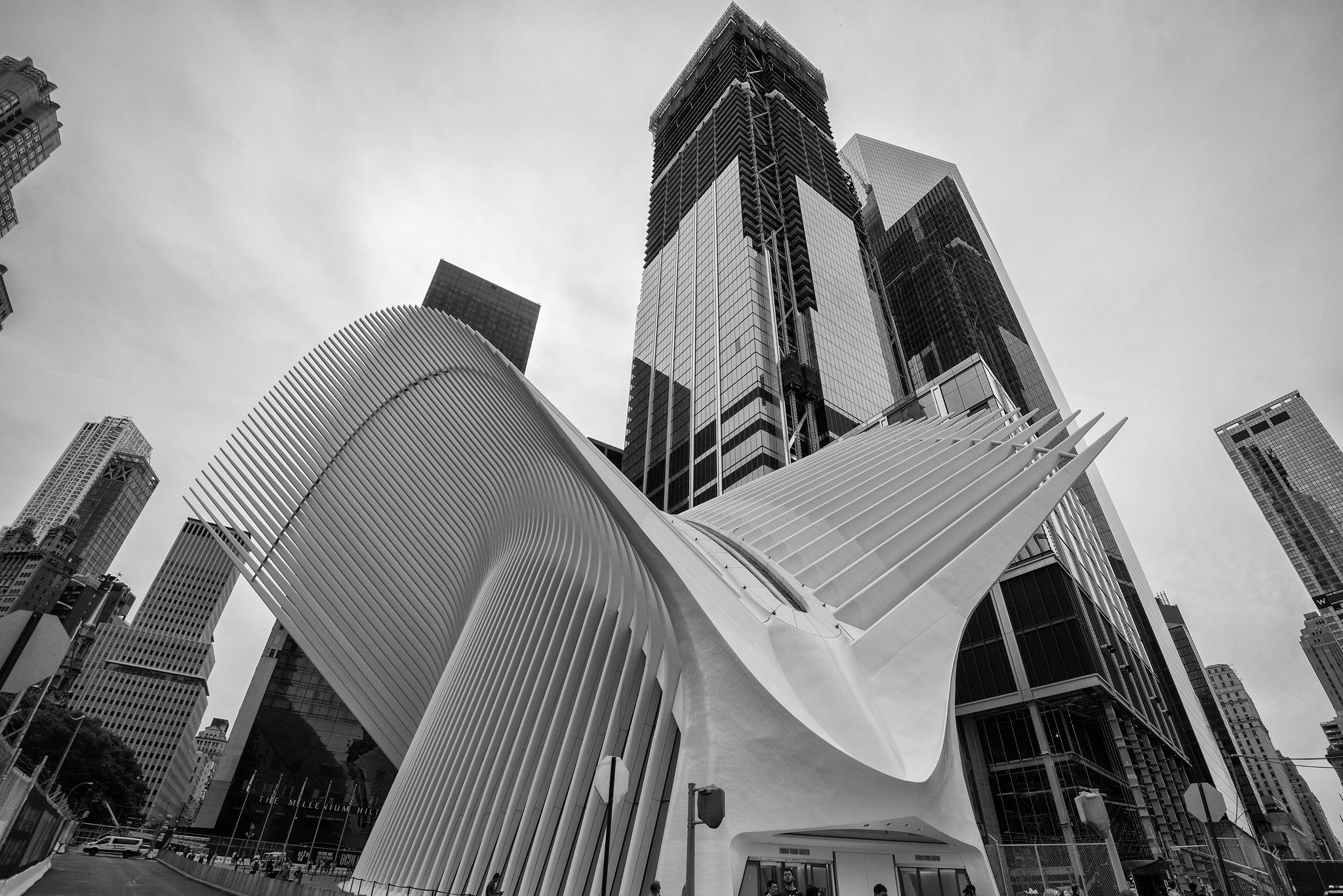 New York, September, 2016 by desmcmahon5