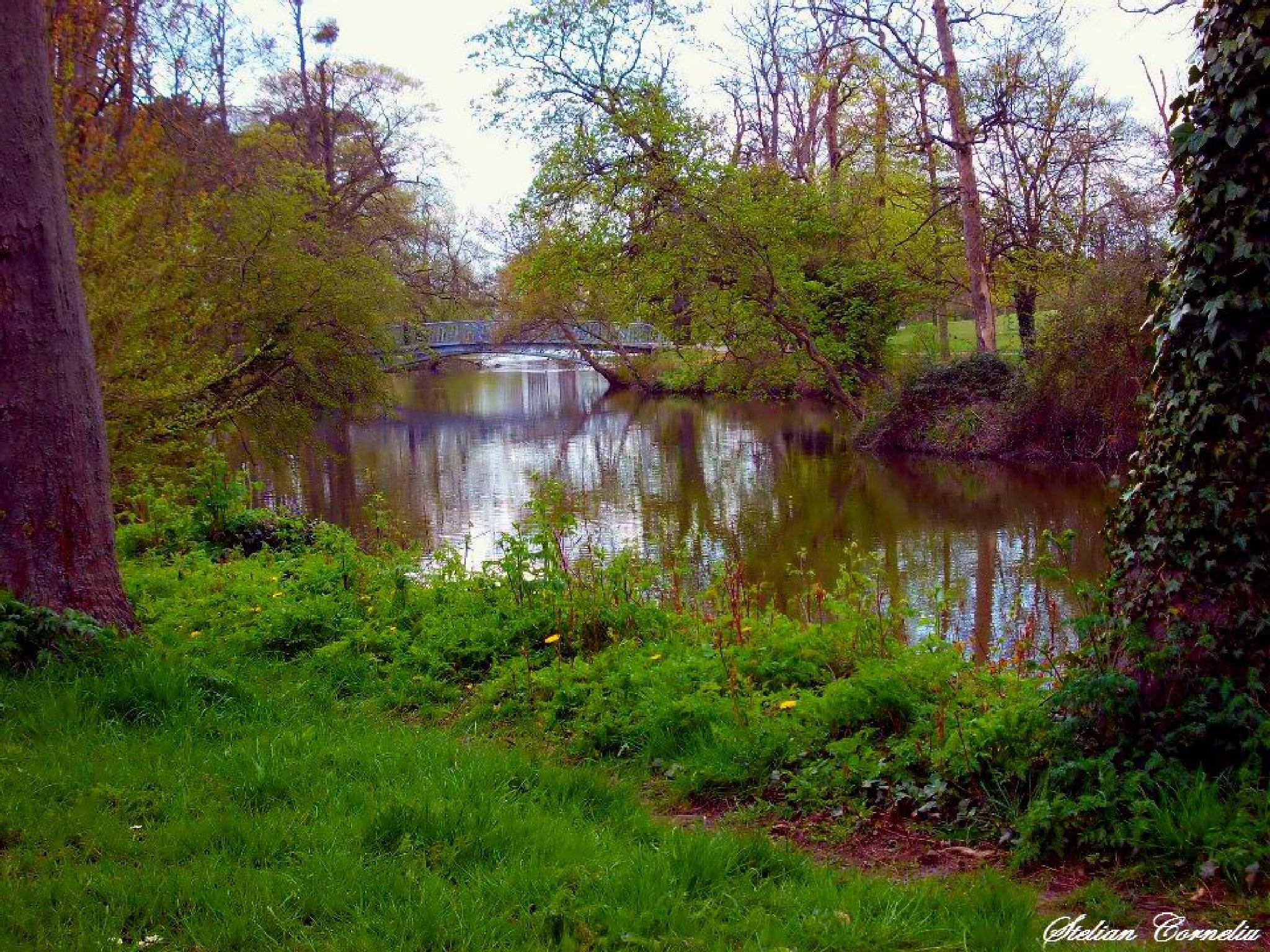 Gloucestershire,Cheltenham by Stelian Corneliu