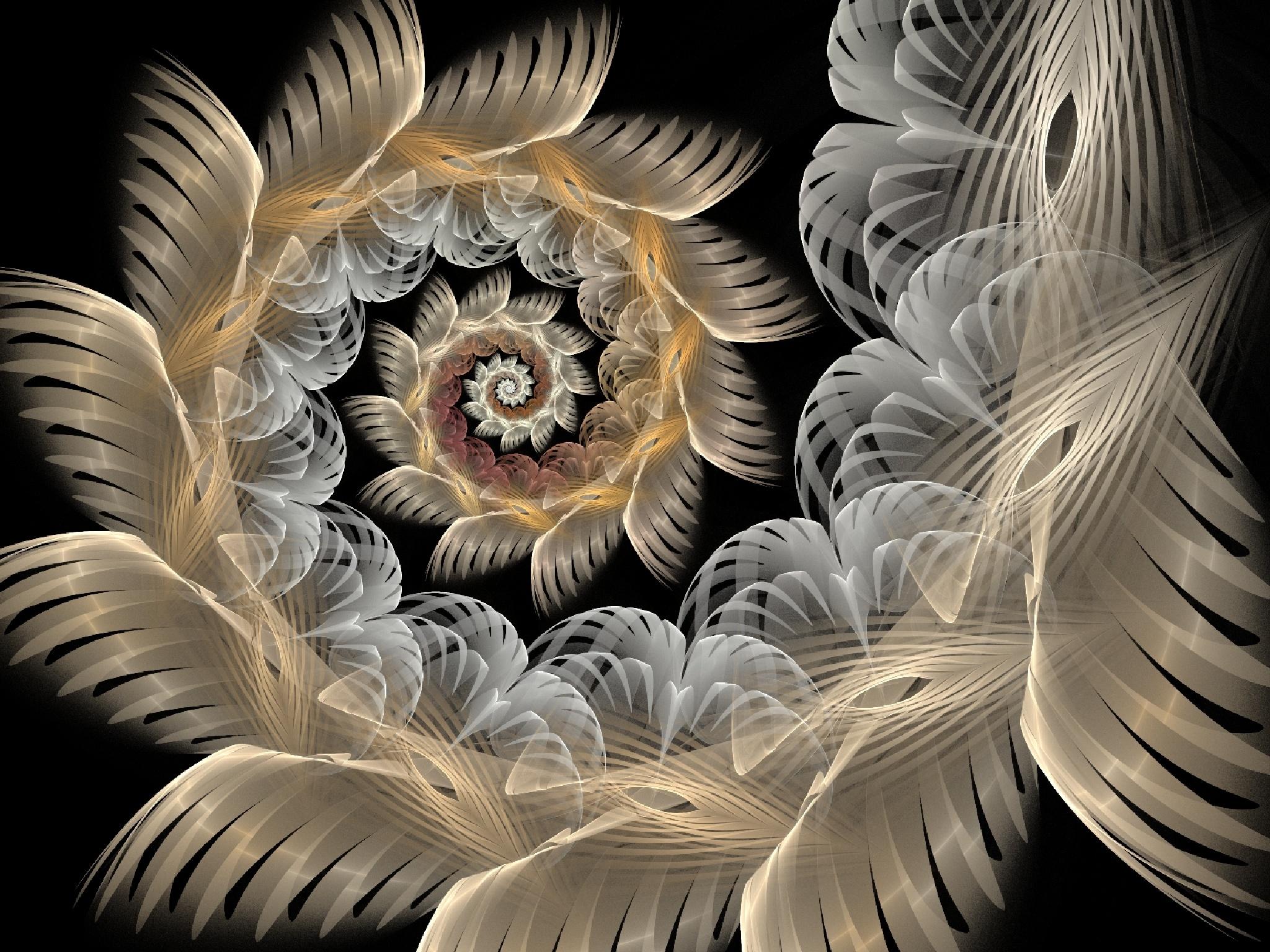 The Spiral of Light by Joe-Maccer