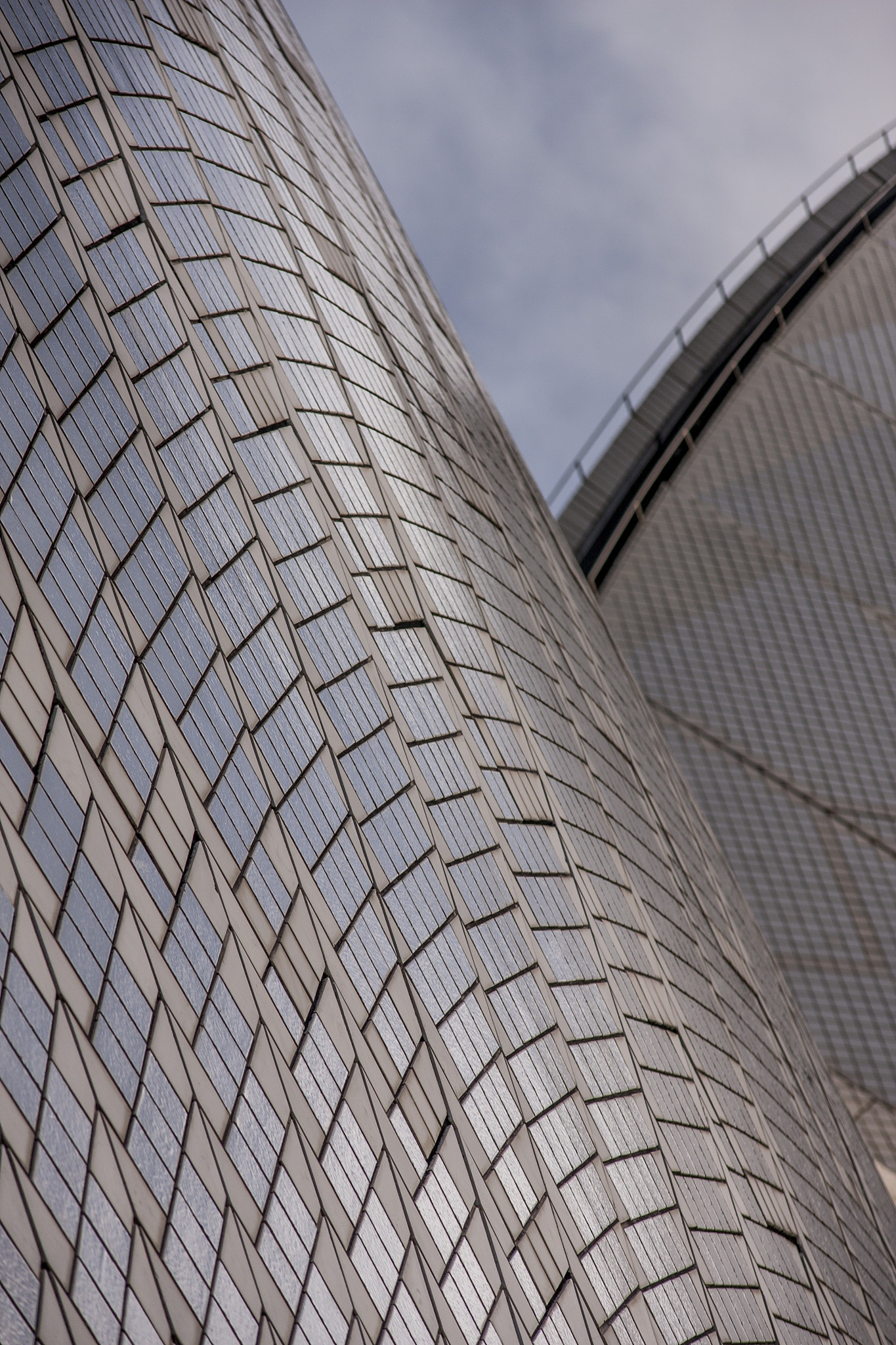 the sails of the Sydney Opera House by Doc Jones