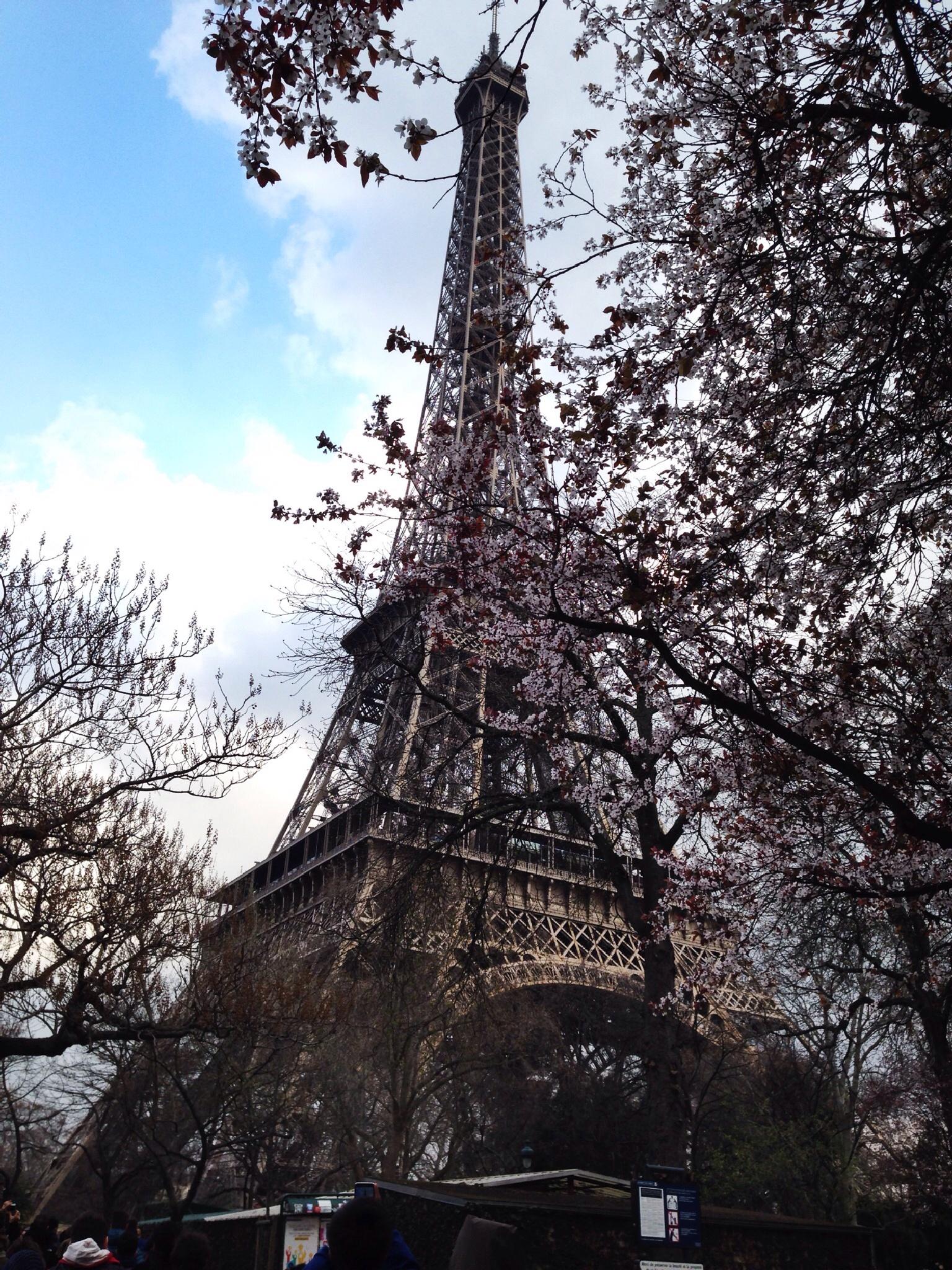 Tour Eiffel, Paris by gabrielebianchini