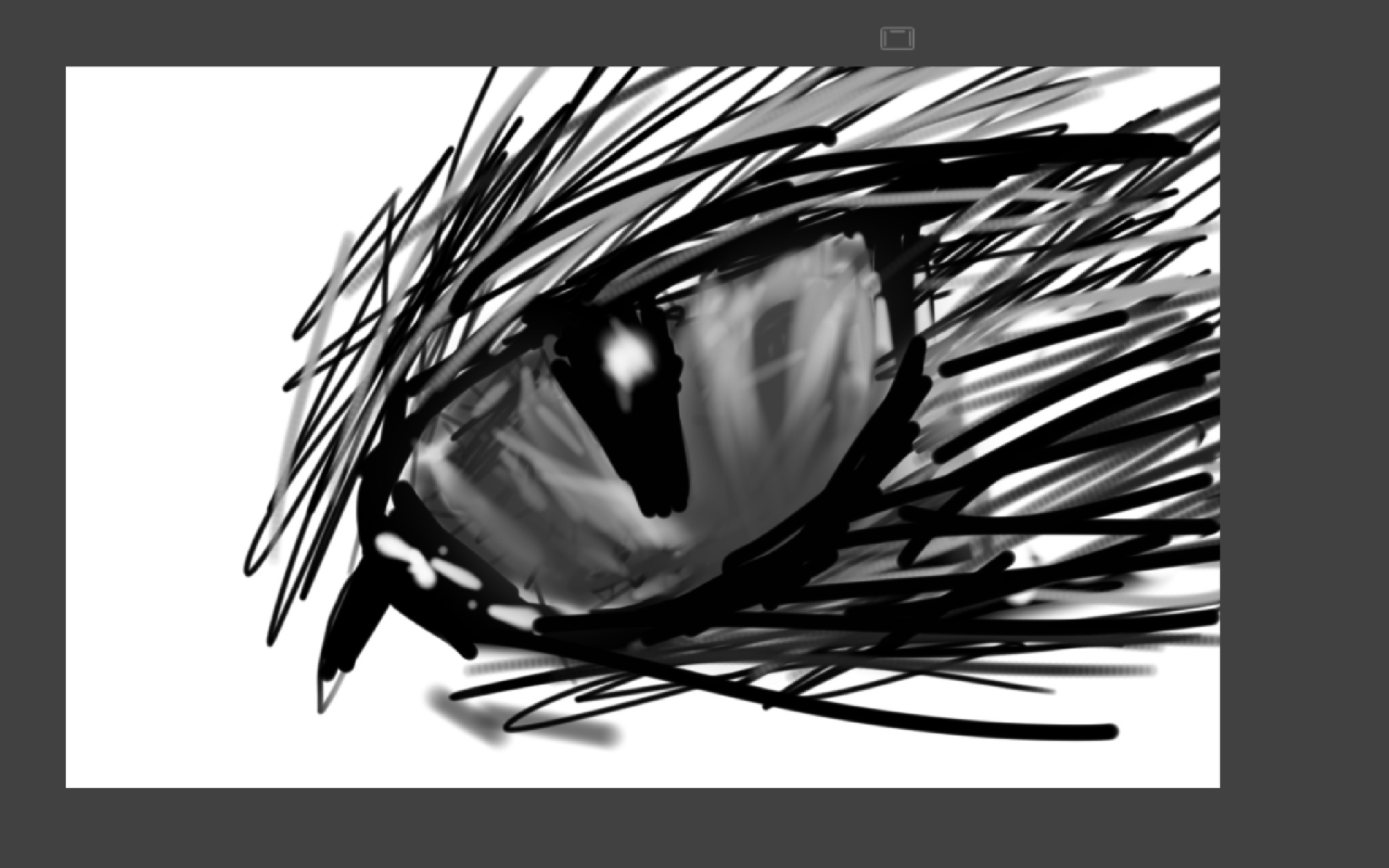 Animal eye by redfox348
