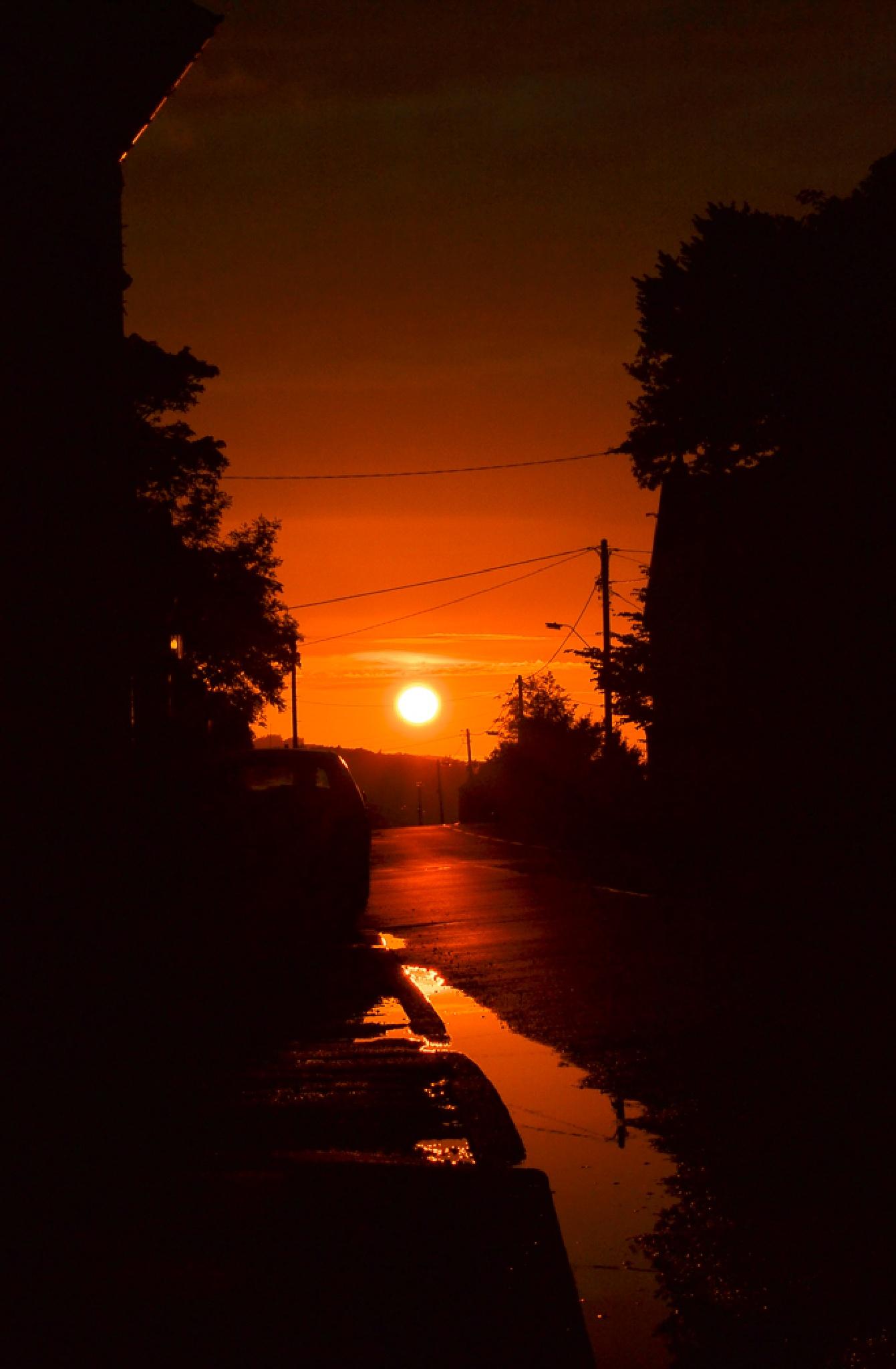 A Fiery Sunset by Nicky Molyneux