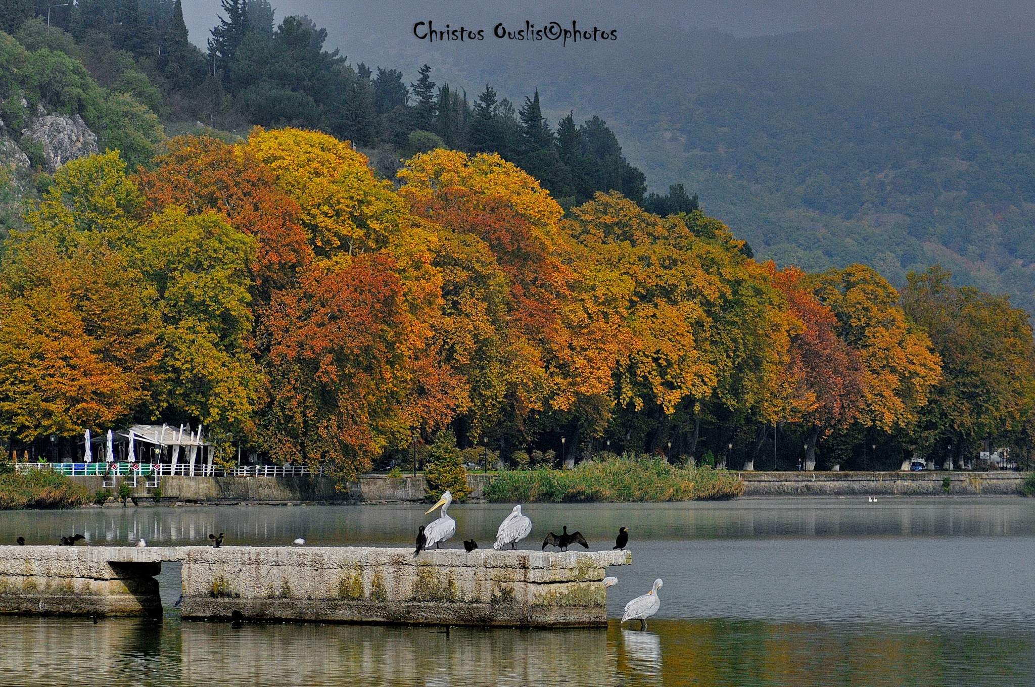 autumn colors on lake by Christos Ouslis