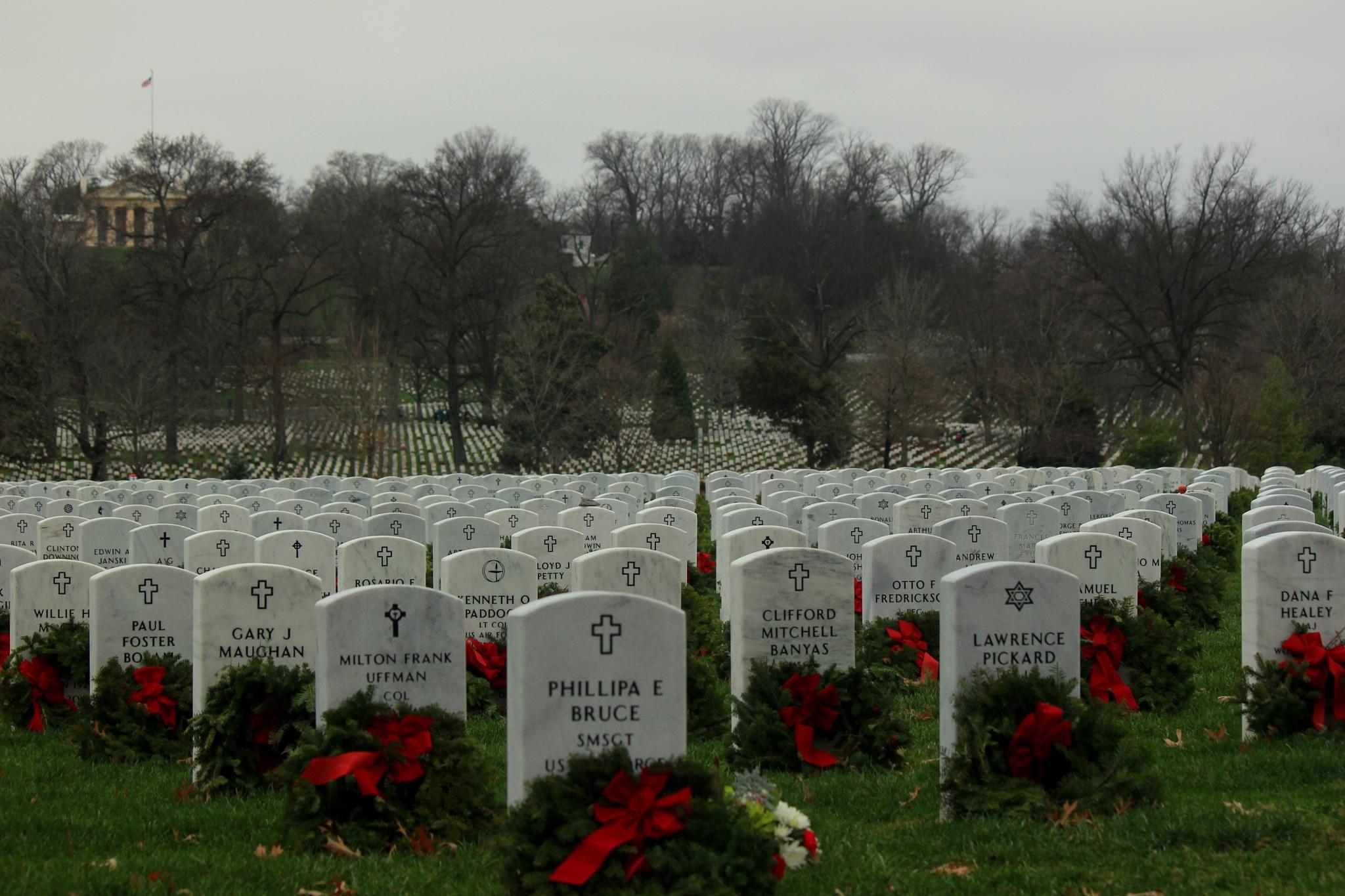 Wreaths in Arlington by paul sikorski
