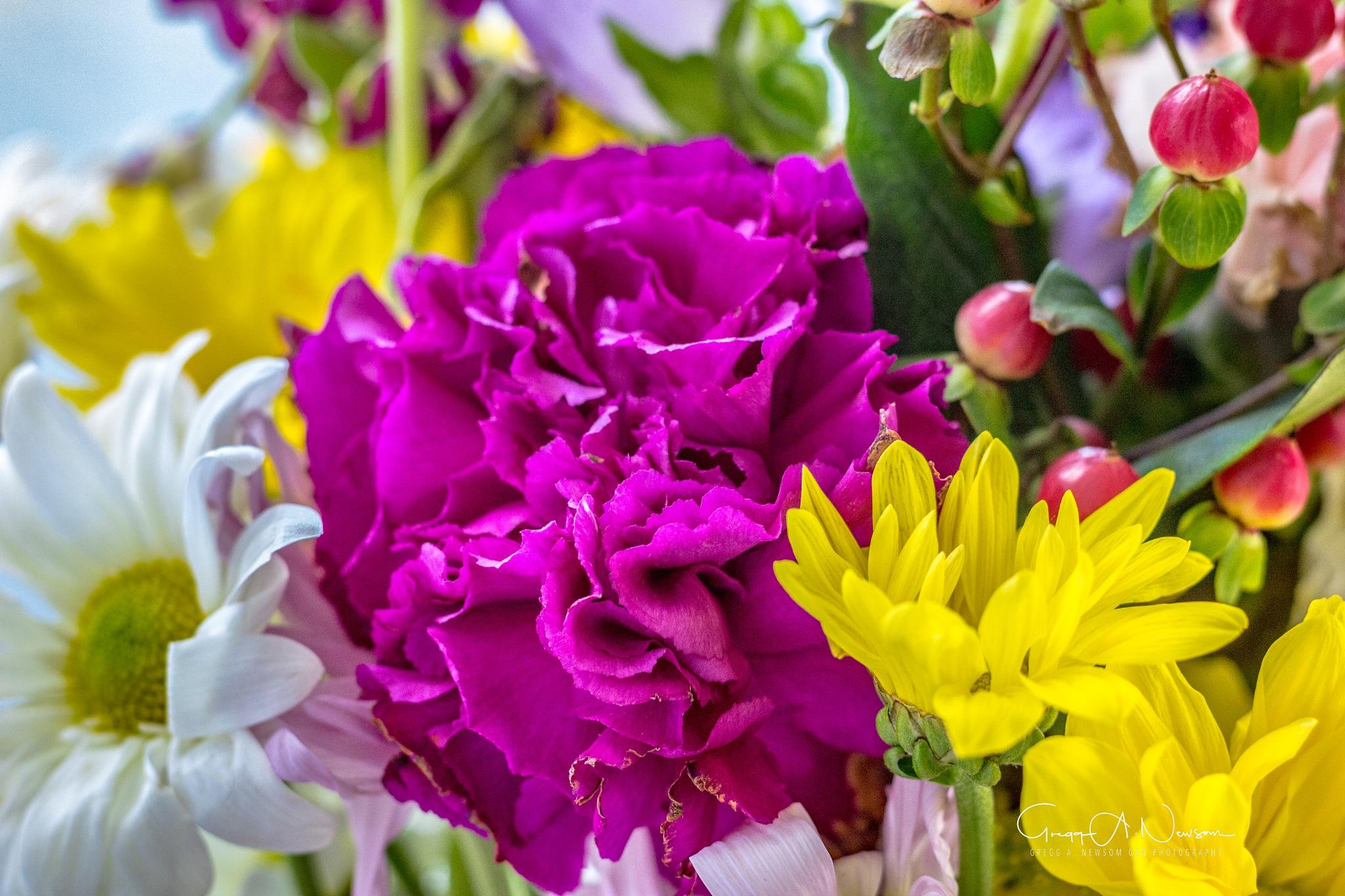 Flowers 1 by Gnewsom324