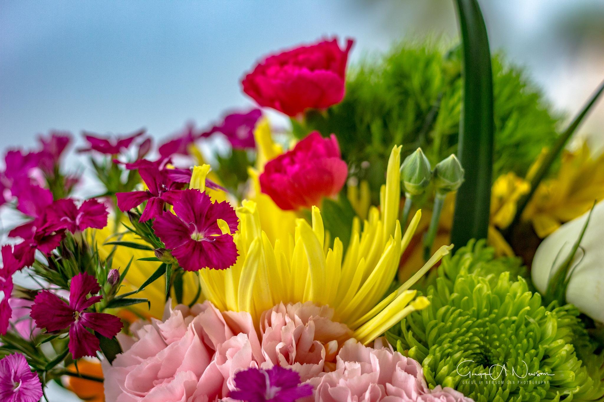 Bouquet 5 by Gnewsom324