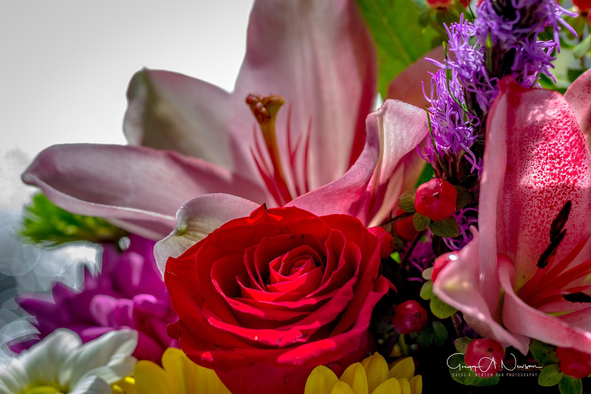 Bouquet 2 by Gnewsom324