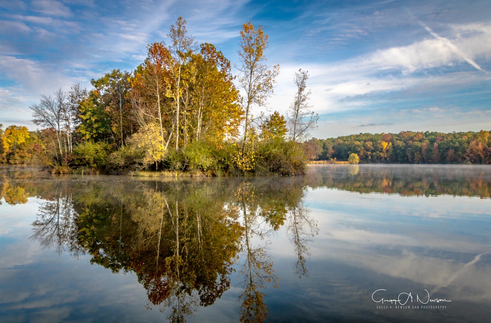 Reflections 5 by Gnewsom324