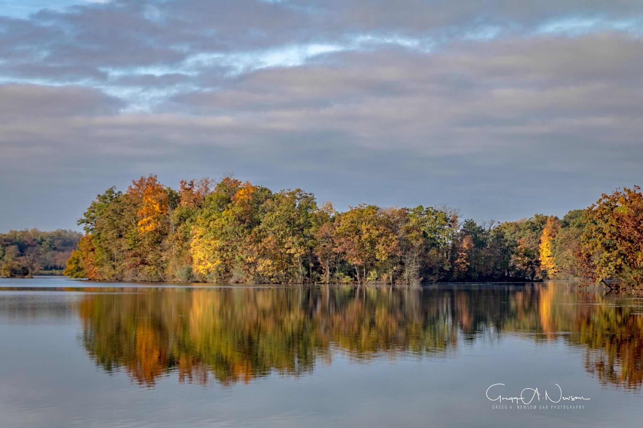 Reflections 10 by Gnewsom324