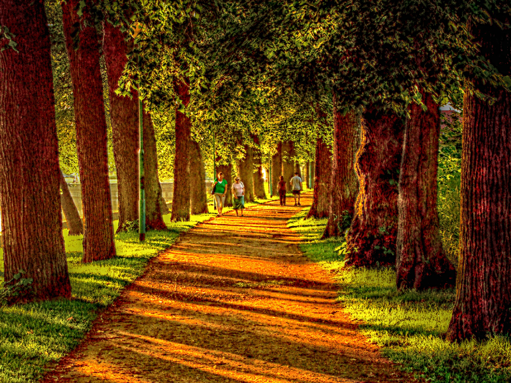 Out and about by Artur S