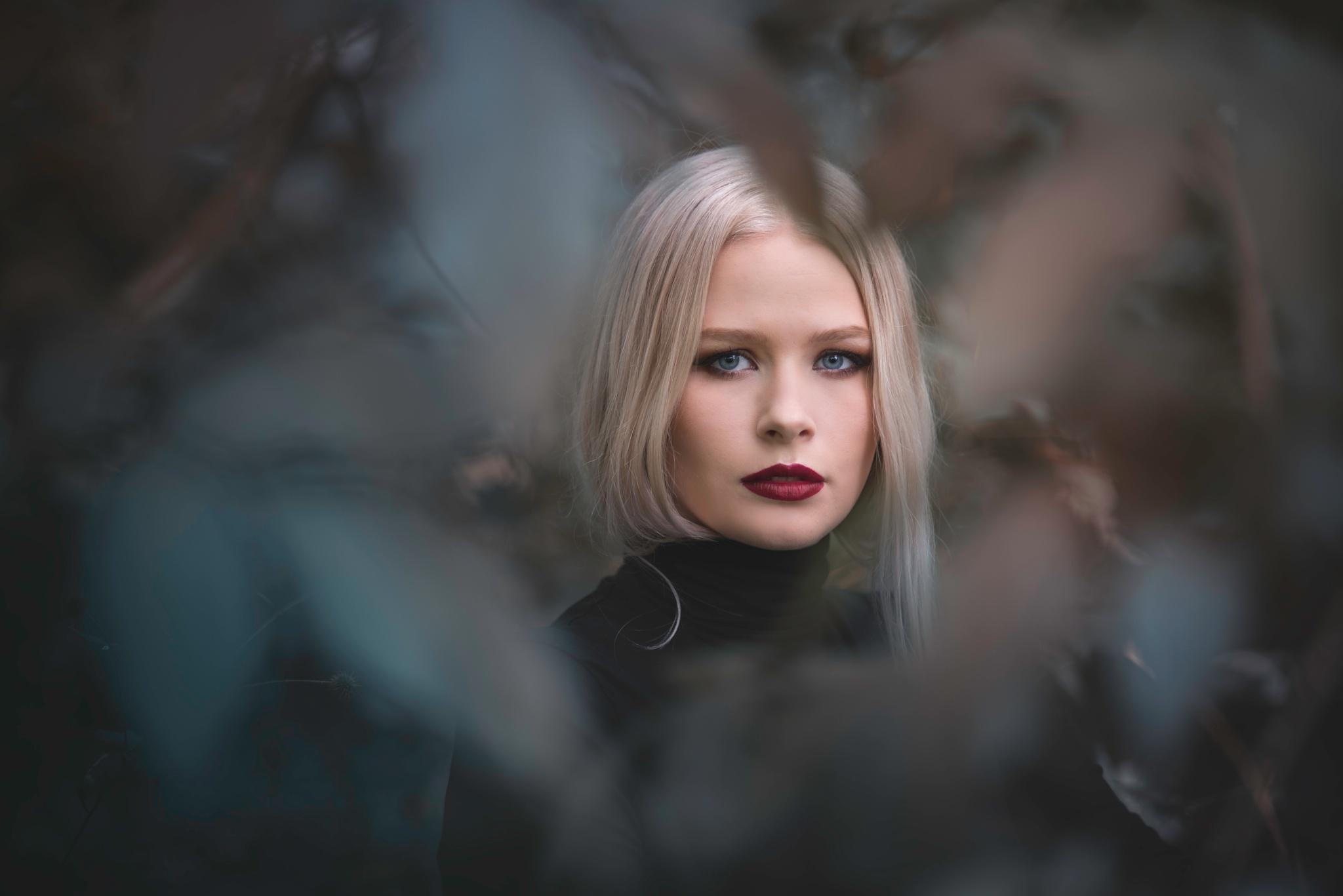 Into the woods by Martin (Tim) van der Veen