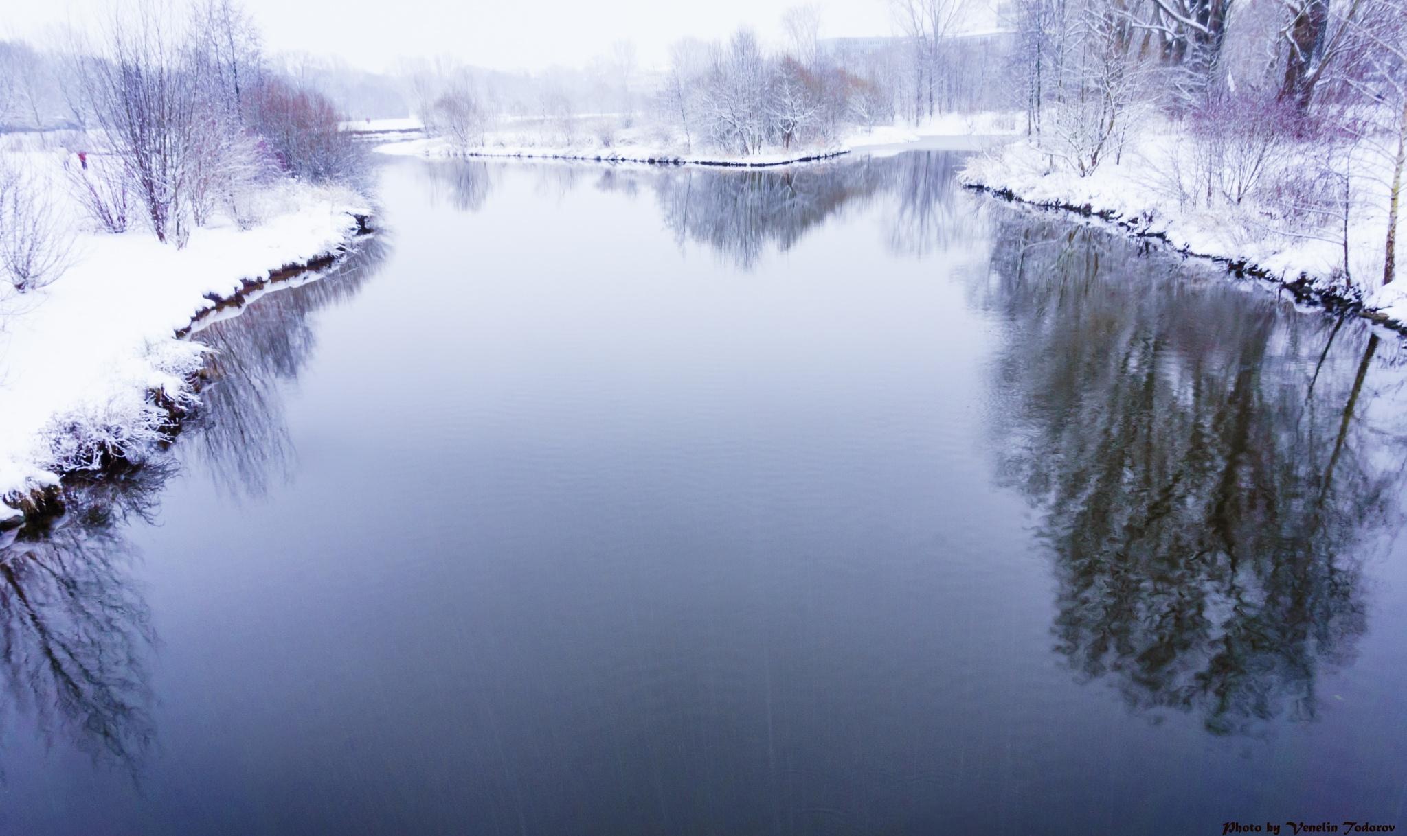 Winter river by Venelin Todorov