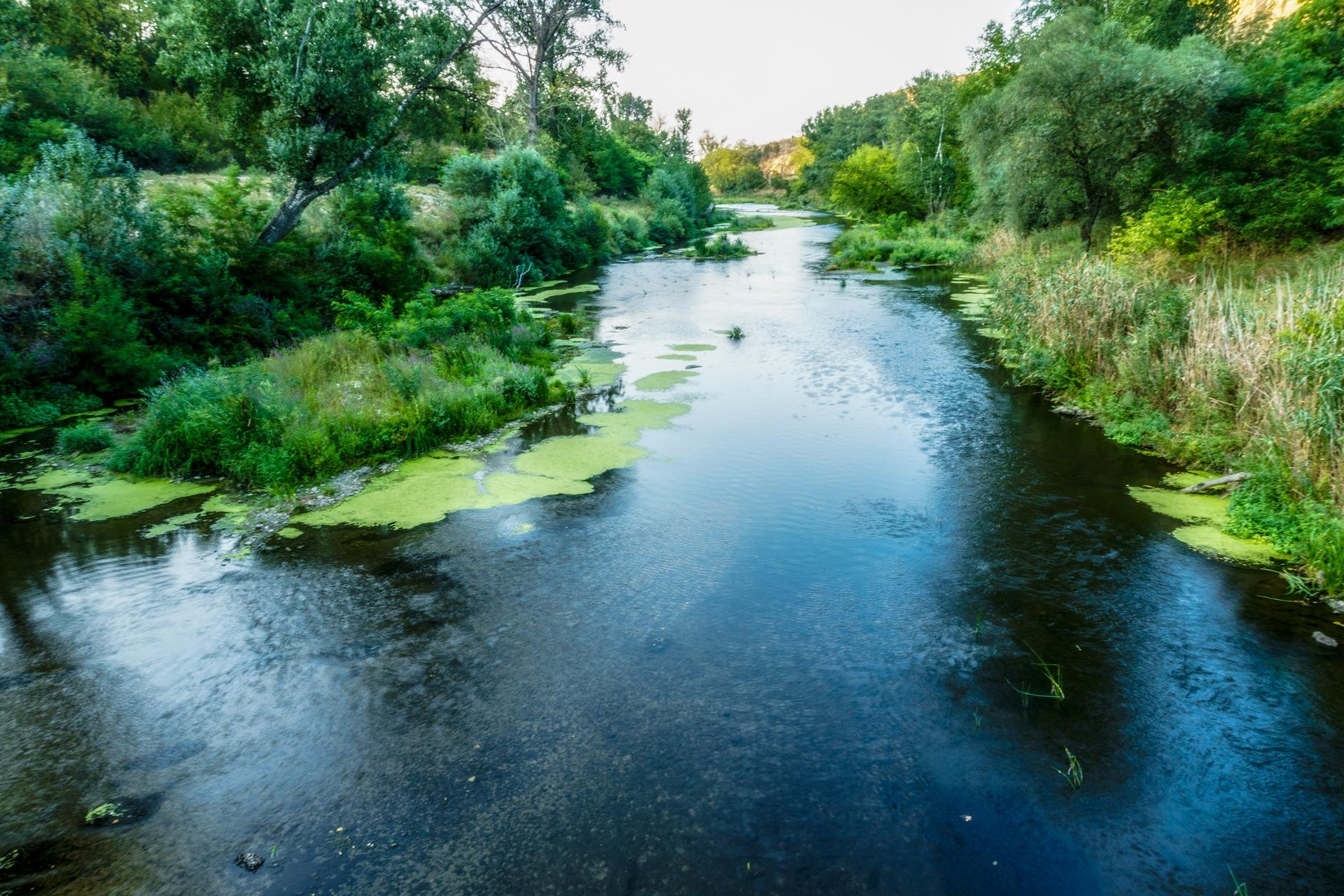 Summer river by Venelin Todorov