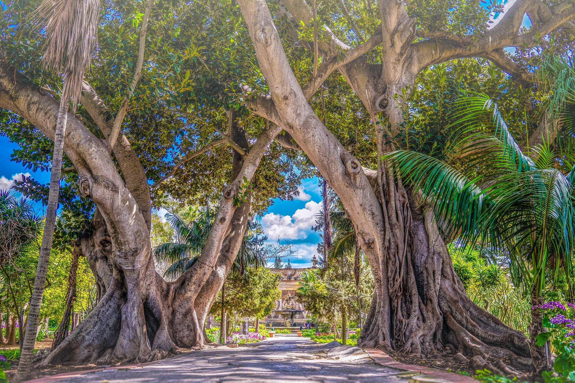 San Anton Garden-Malta by Venelin Todorov