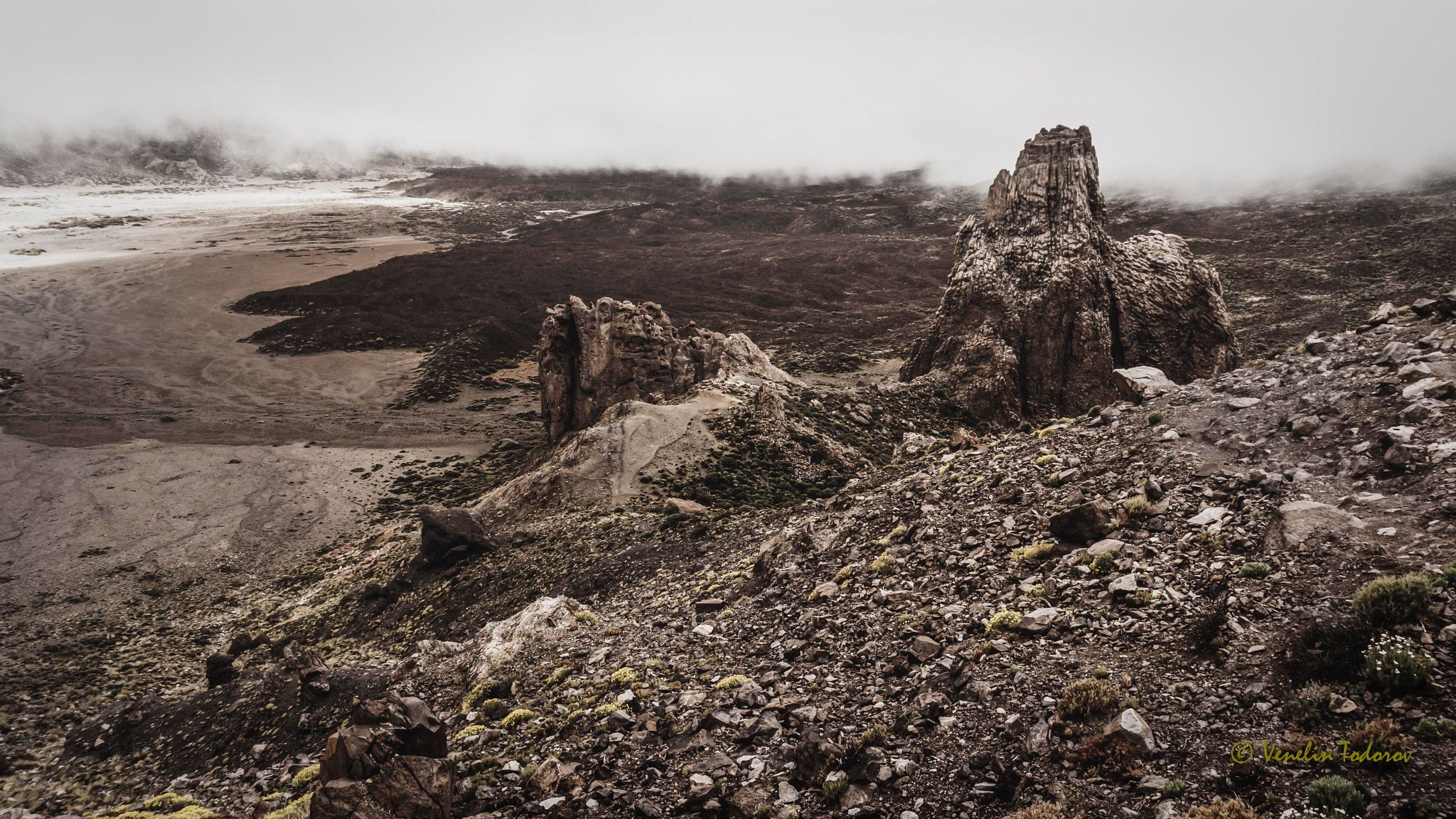 Wilderness by Venelin Todorov