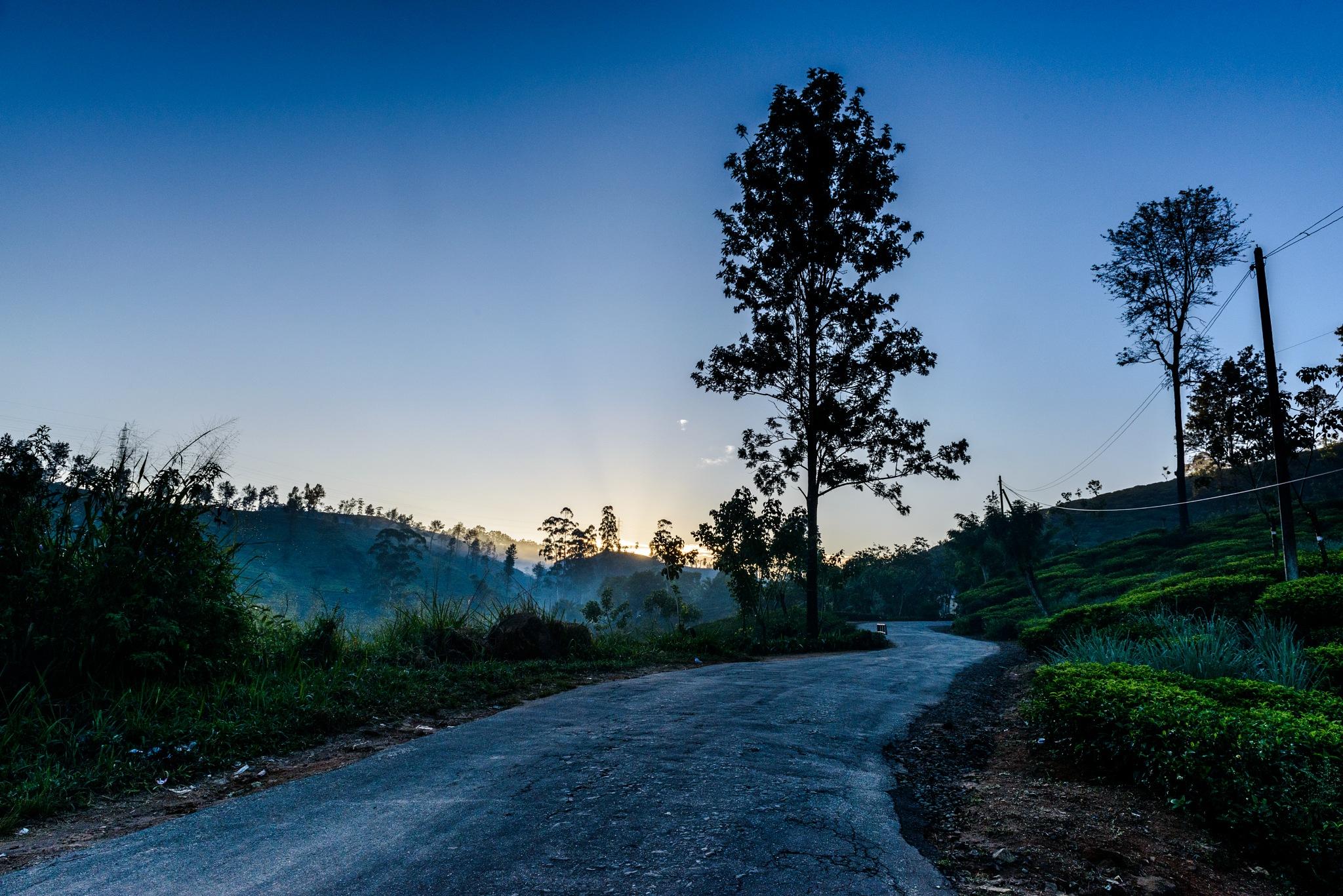 Sunrise at Sri Pada - tea plantation - 5 by klchin66
