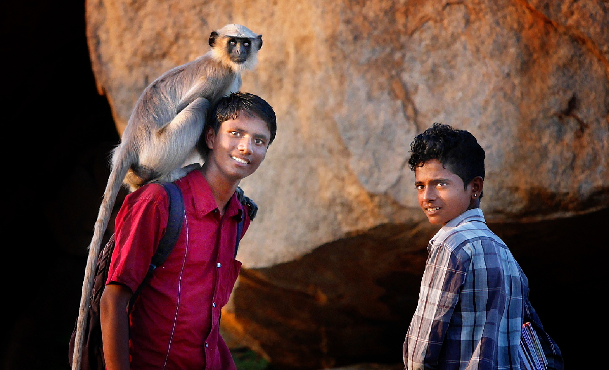 Tour-guides with Gray Langur by Fred Obermann