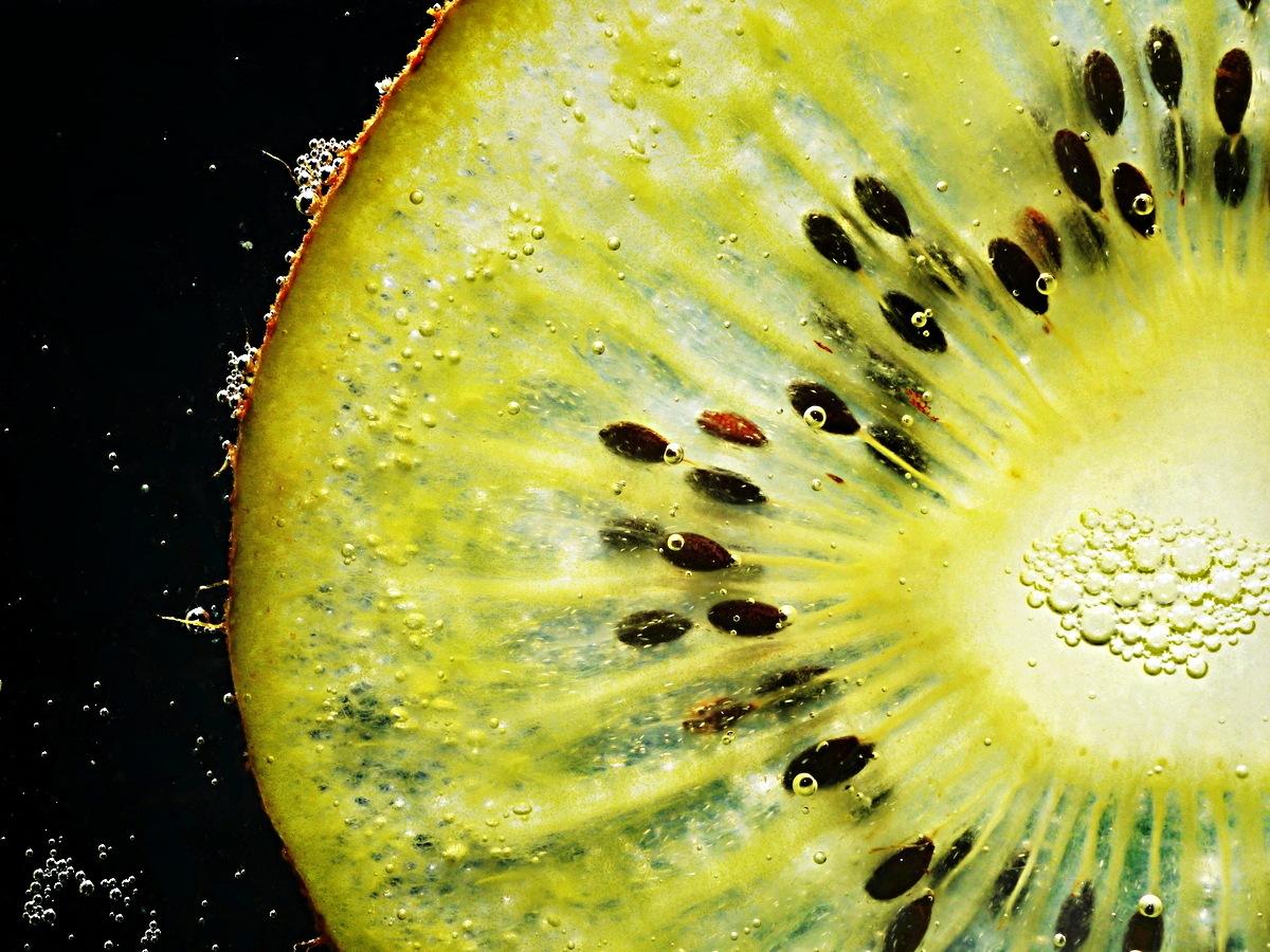Seedyscape 10 by Fred Obermann