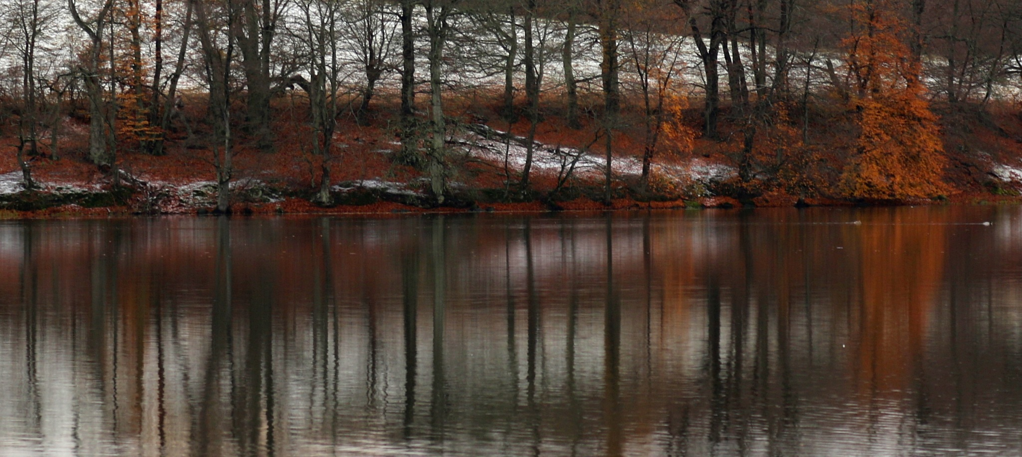 Water reflections by AnnDessnert