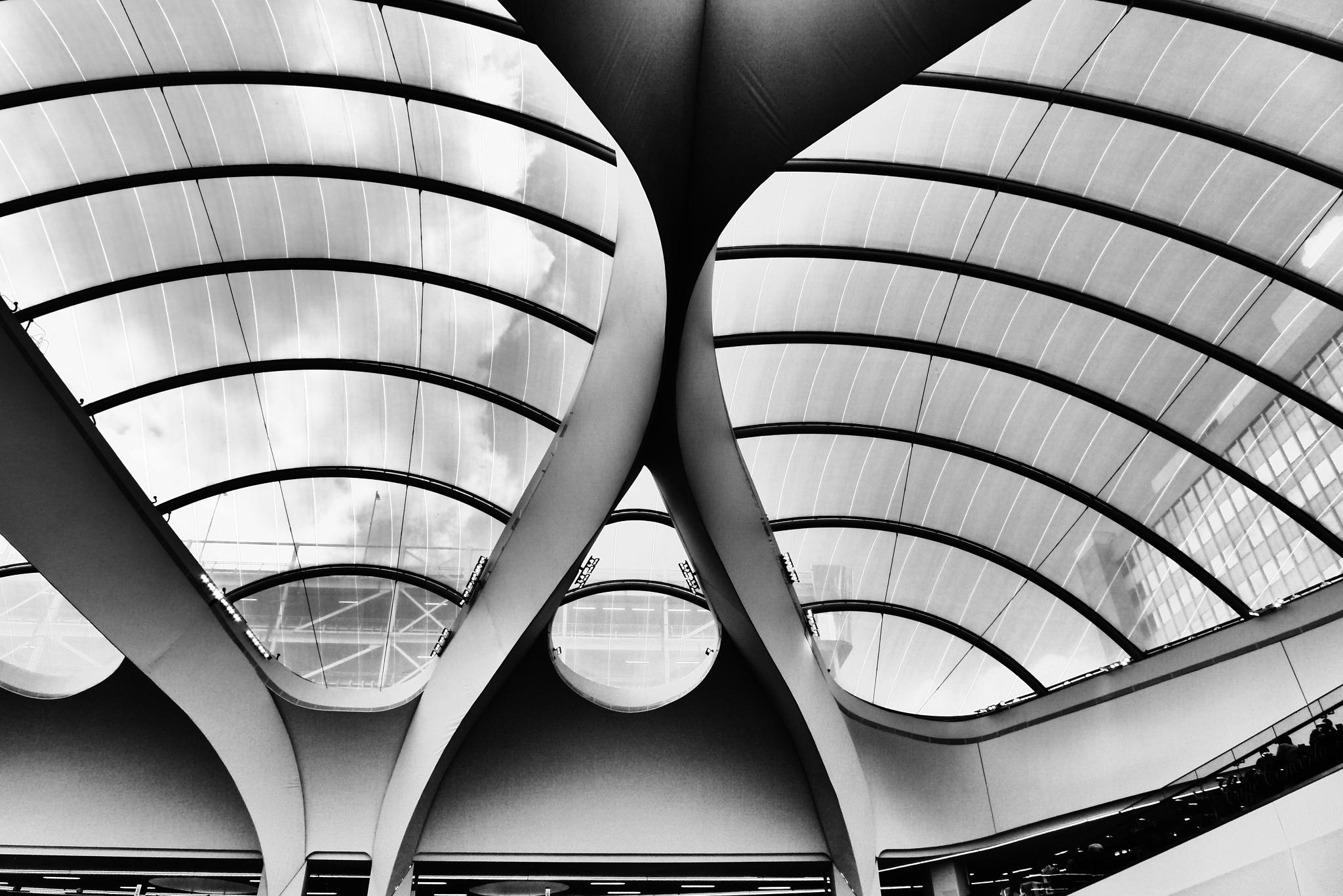 Alien roof by AJ Yakstrangler Andy Jamieson