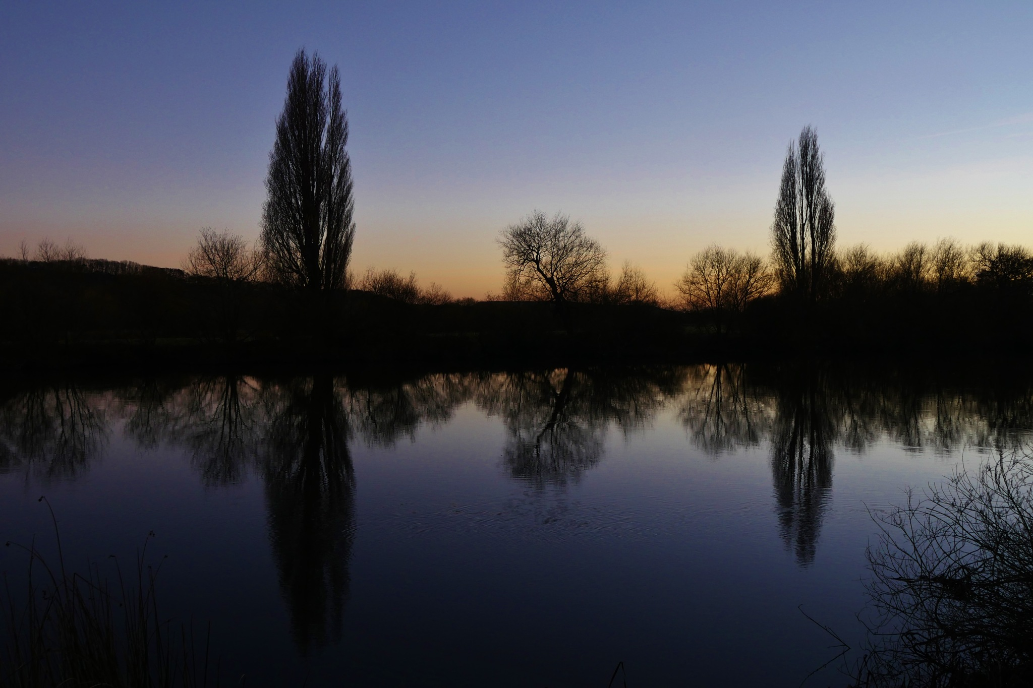 Winter river trees by AJ Yakstrangler Andy Jamieson