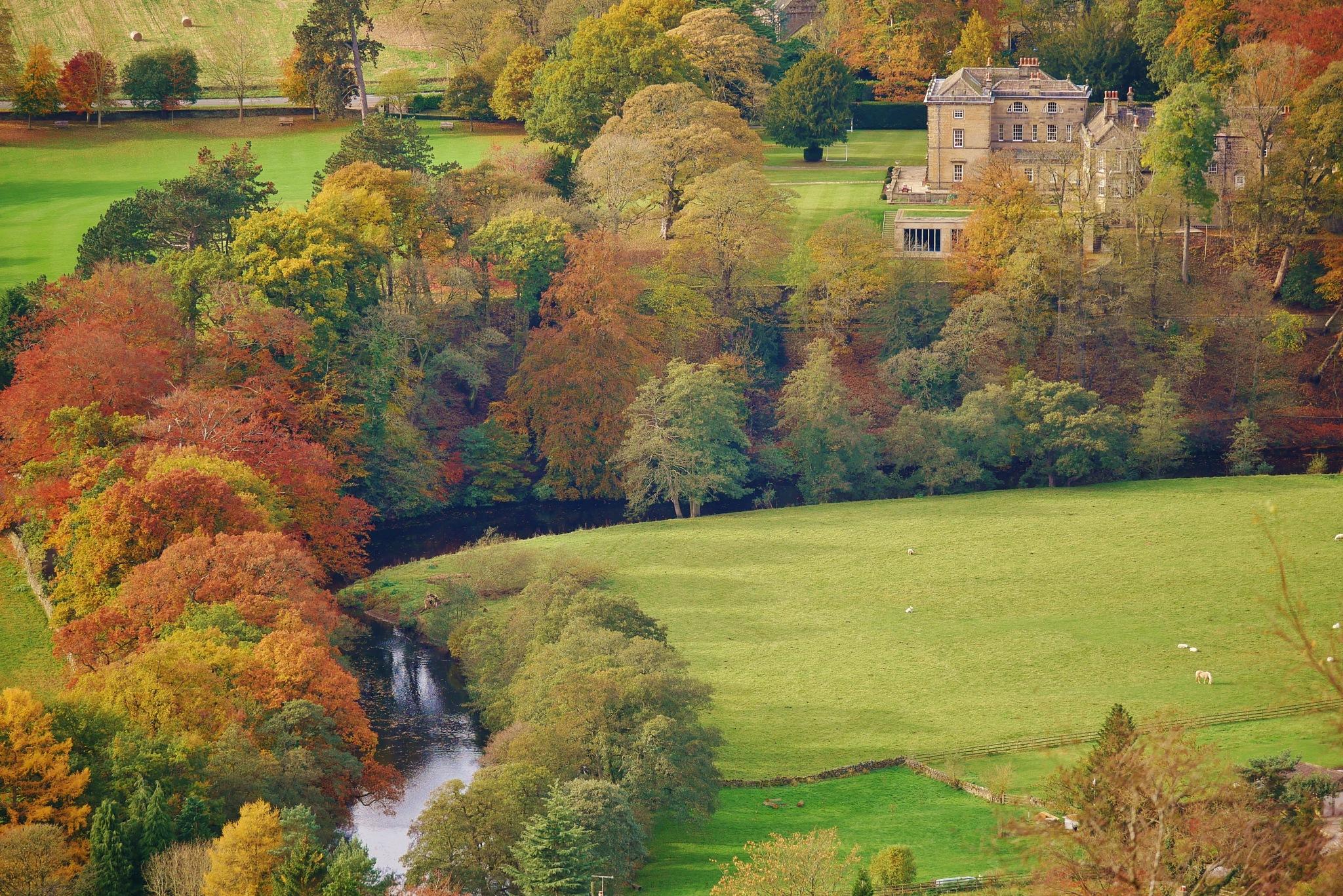 Autumnal estate by AJ Yakstrangler Andy Jamieson