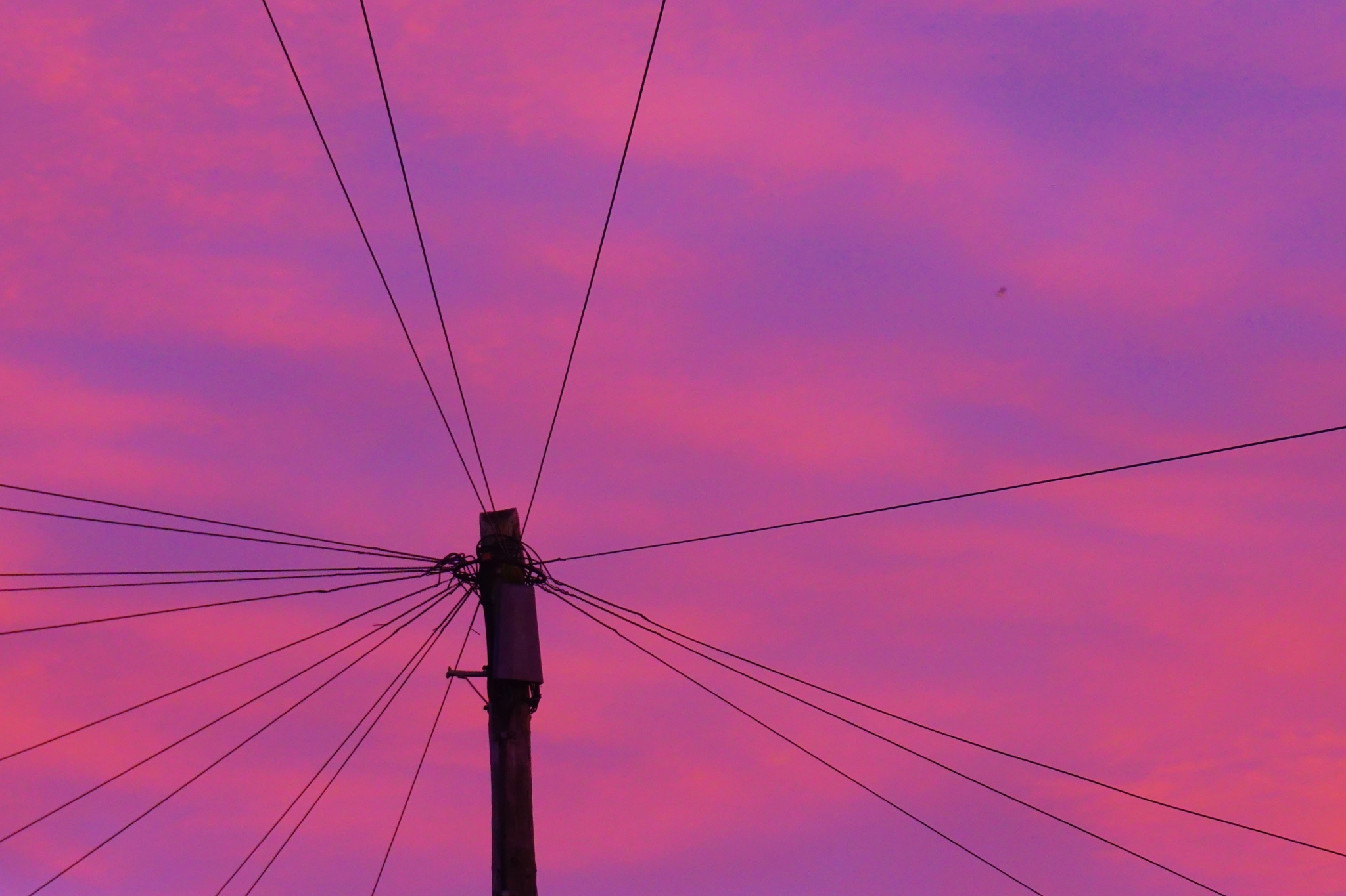 Wired sunrise by AJ Yakstrangler Andy Jamieson