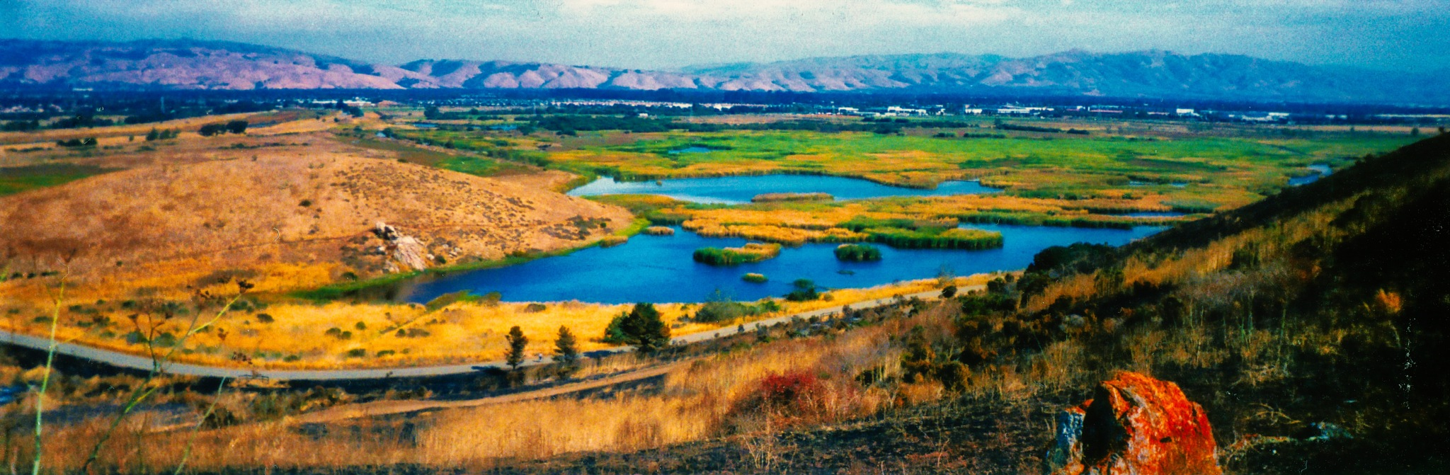 Hills view by AJ Yakstrangler Andy Jamieson