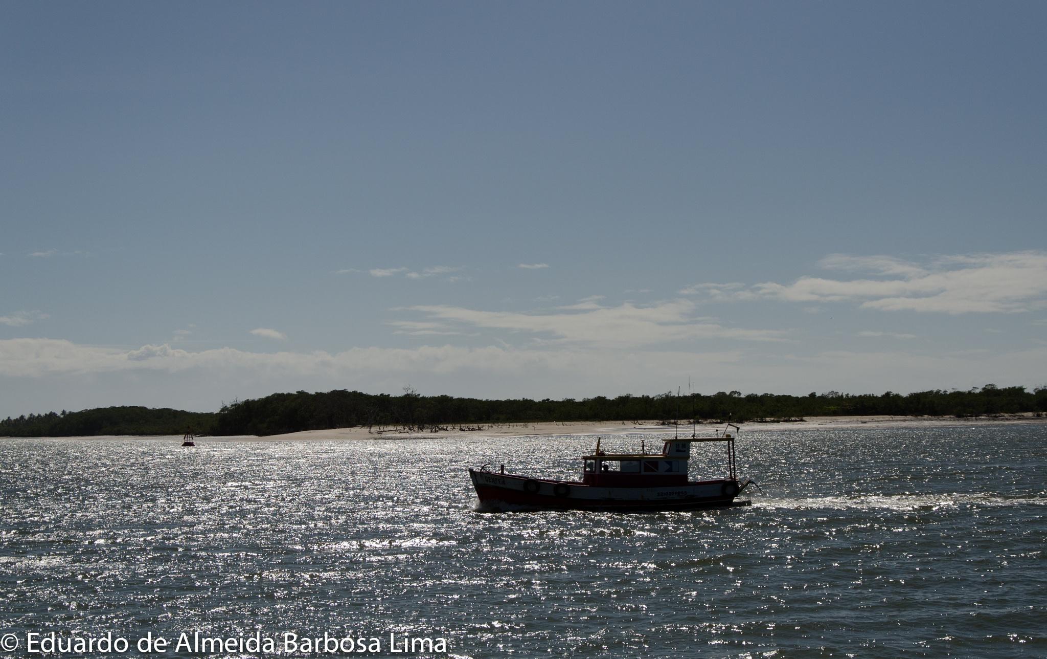 Sailing by Eduardo Lima