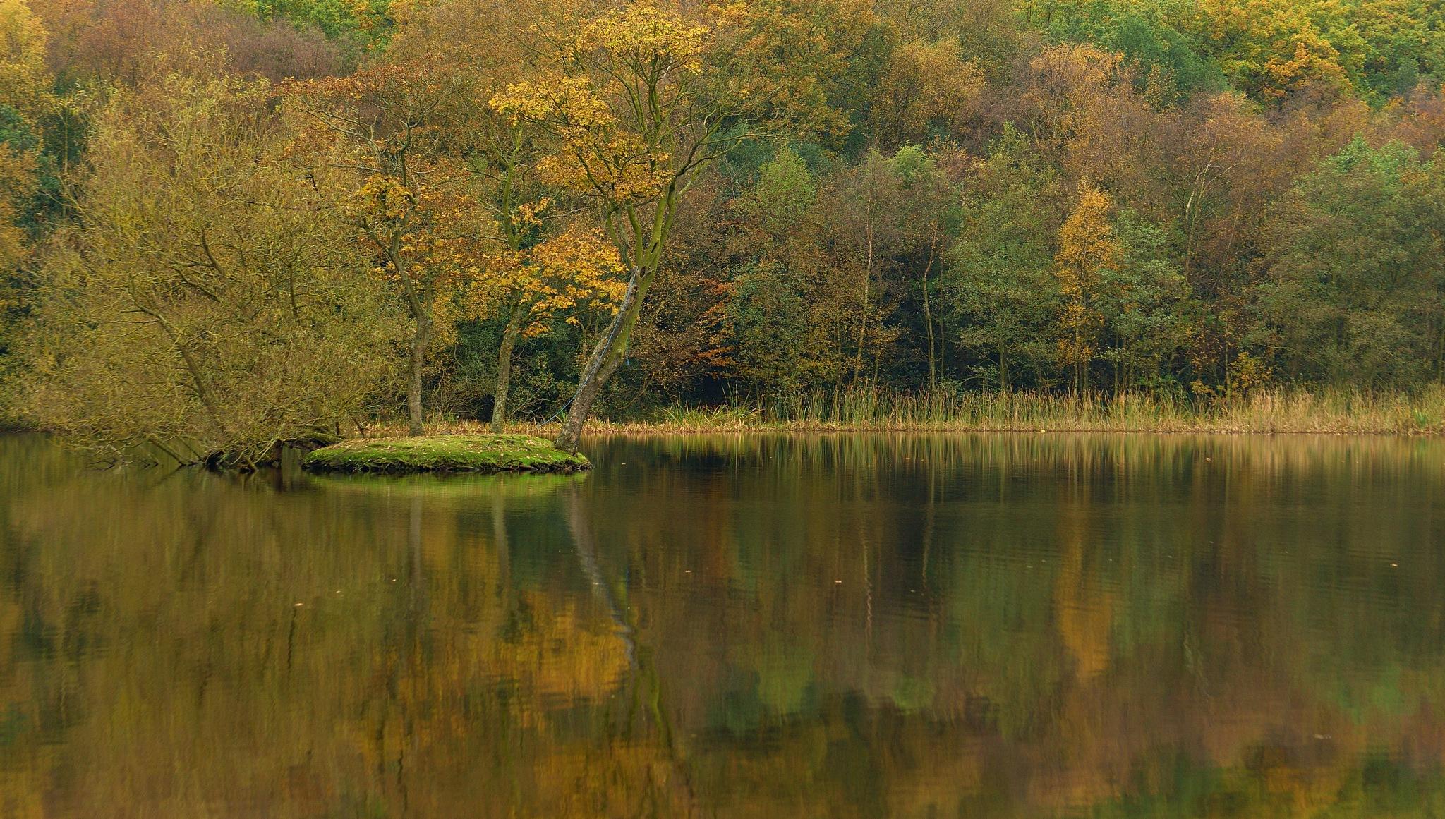 Autumn by hammarbytp