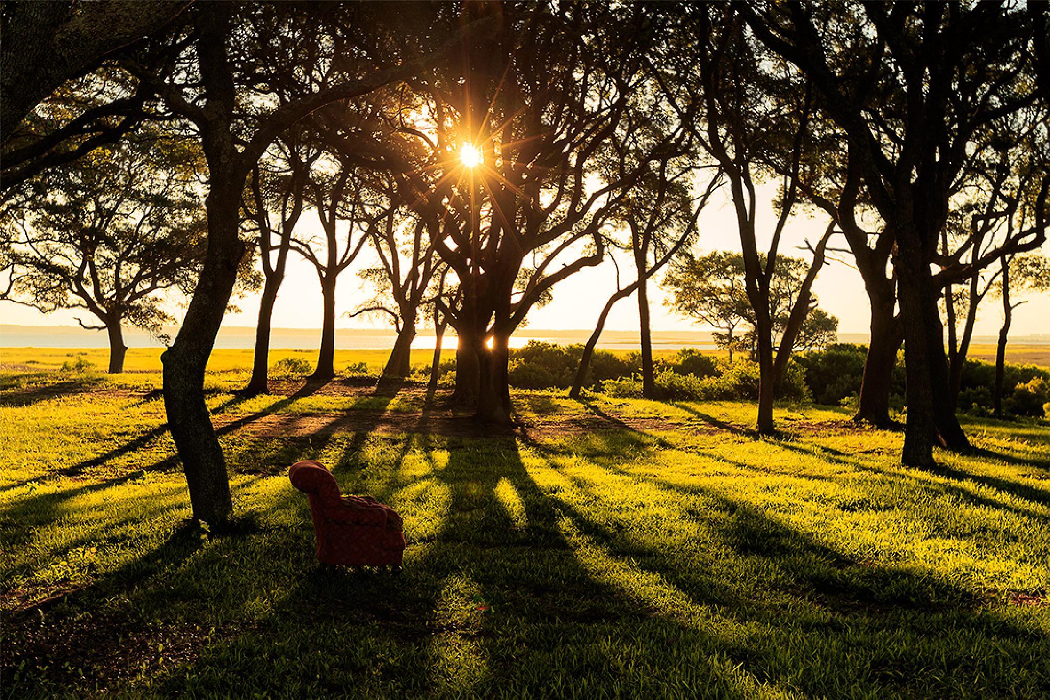 Sunset at Fort Fisher, North Carolina by Mirela Savu