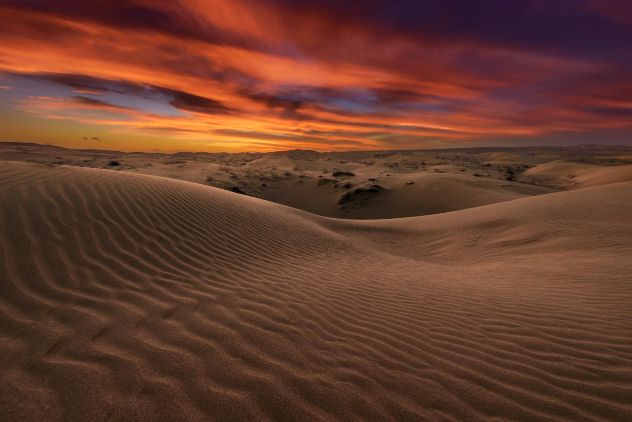 Desert texture by Saeed Mohammadzadeh