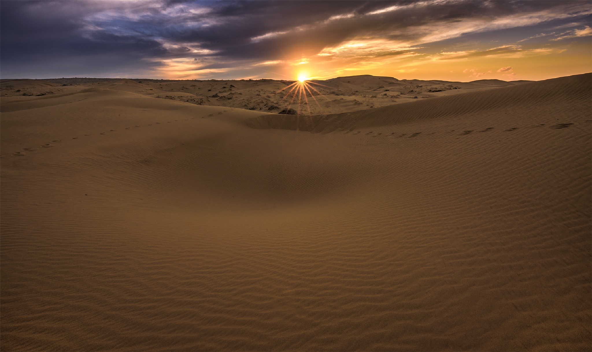 Iran / Desert Maranjab   by Saeed Mohammadzadeh