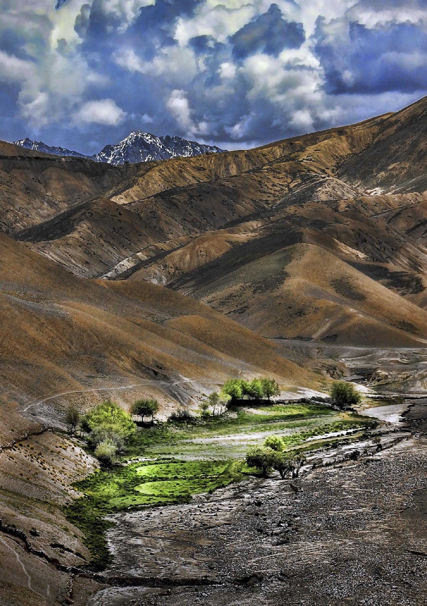 Life in Death Valley  by Avinash Chandra Little