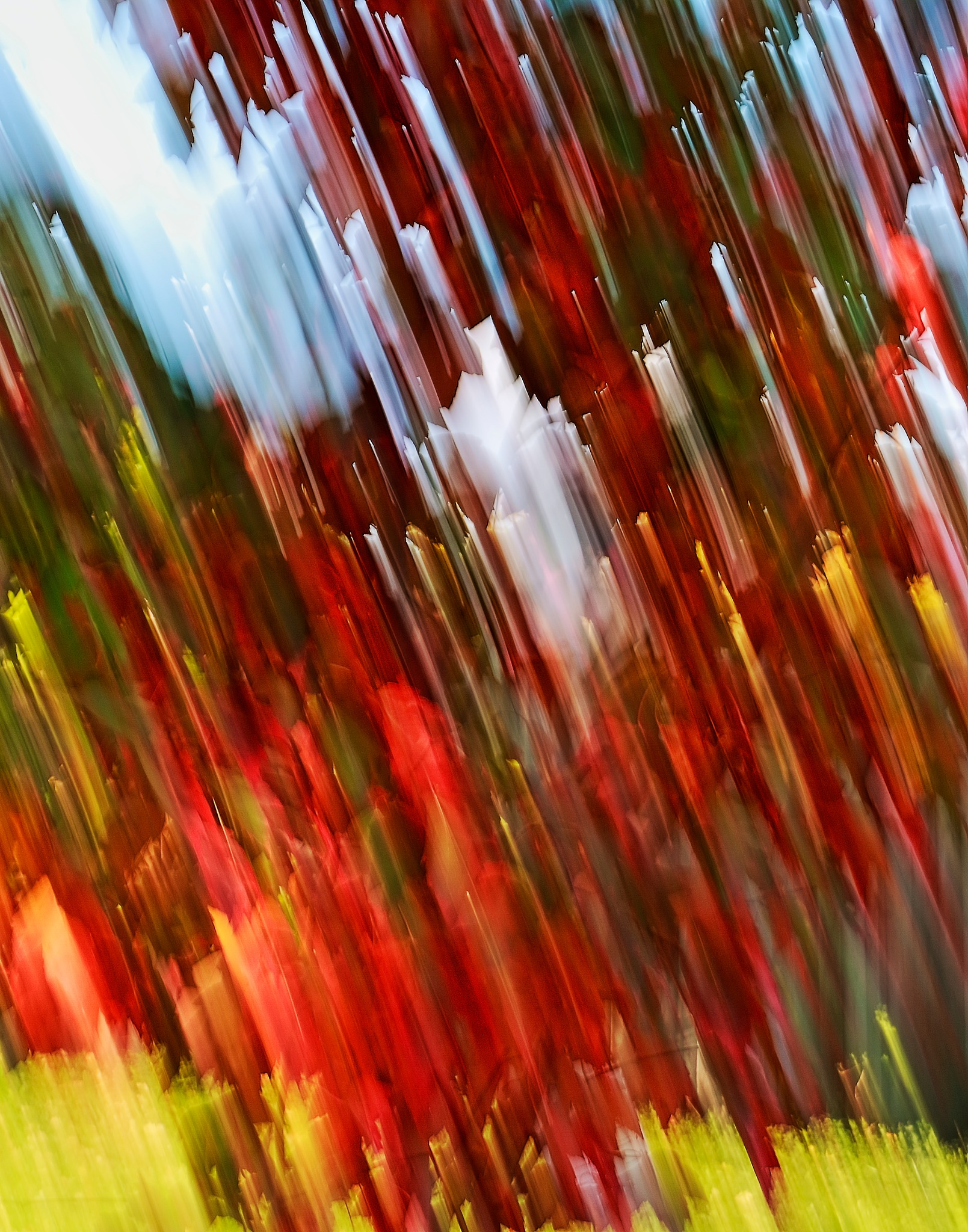 Autumn colors Abstract #3 by Daniel J. Ruggiero