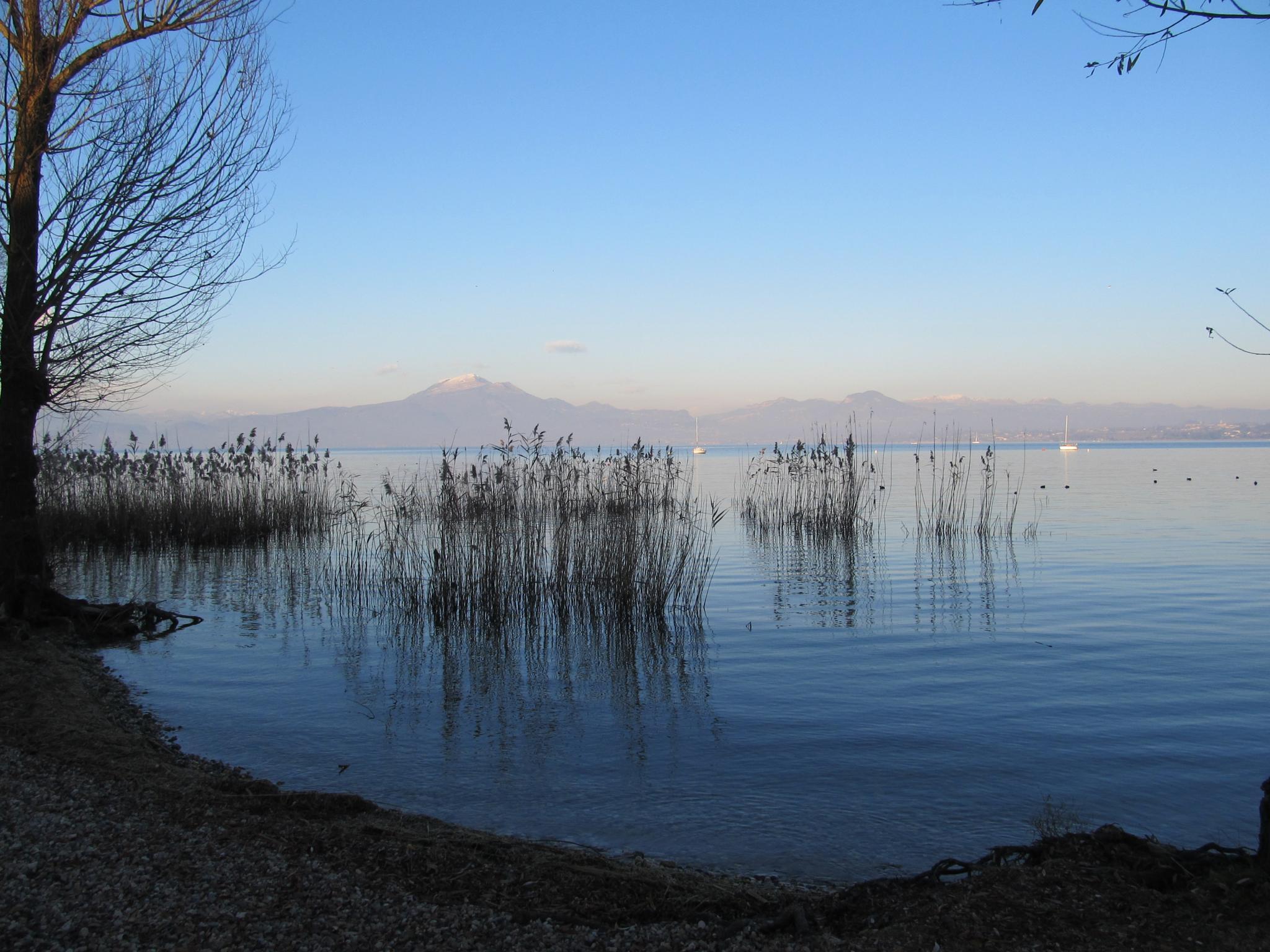 Lake Garda Italy by tracybertapelle