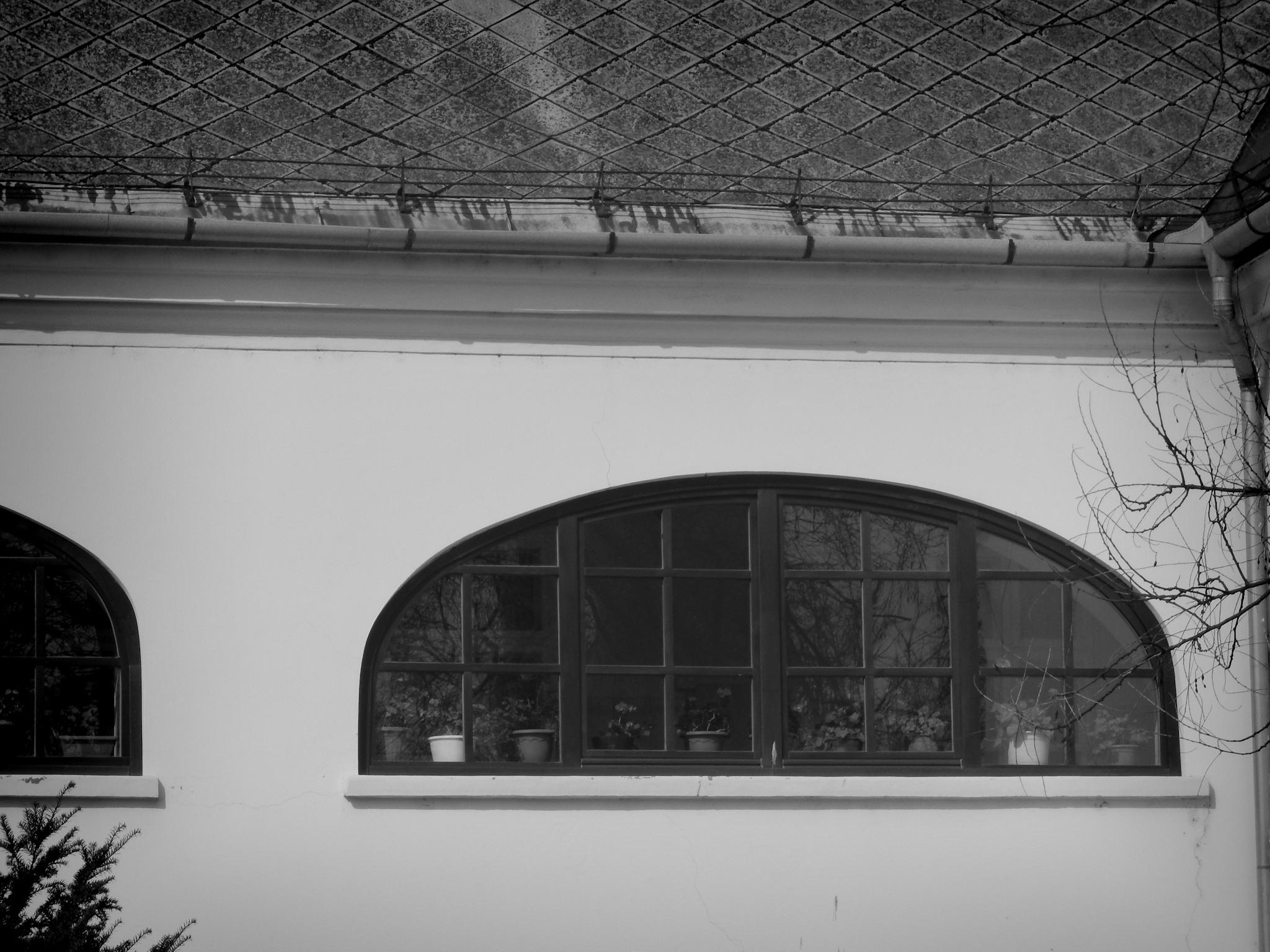 Old school by Balazs Kosaras