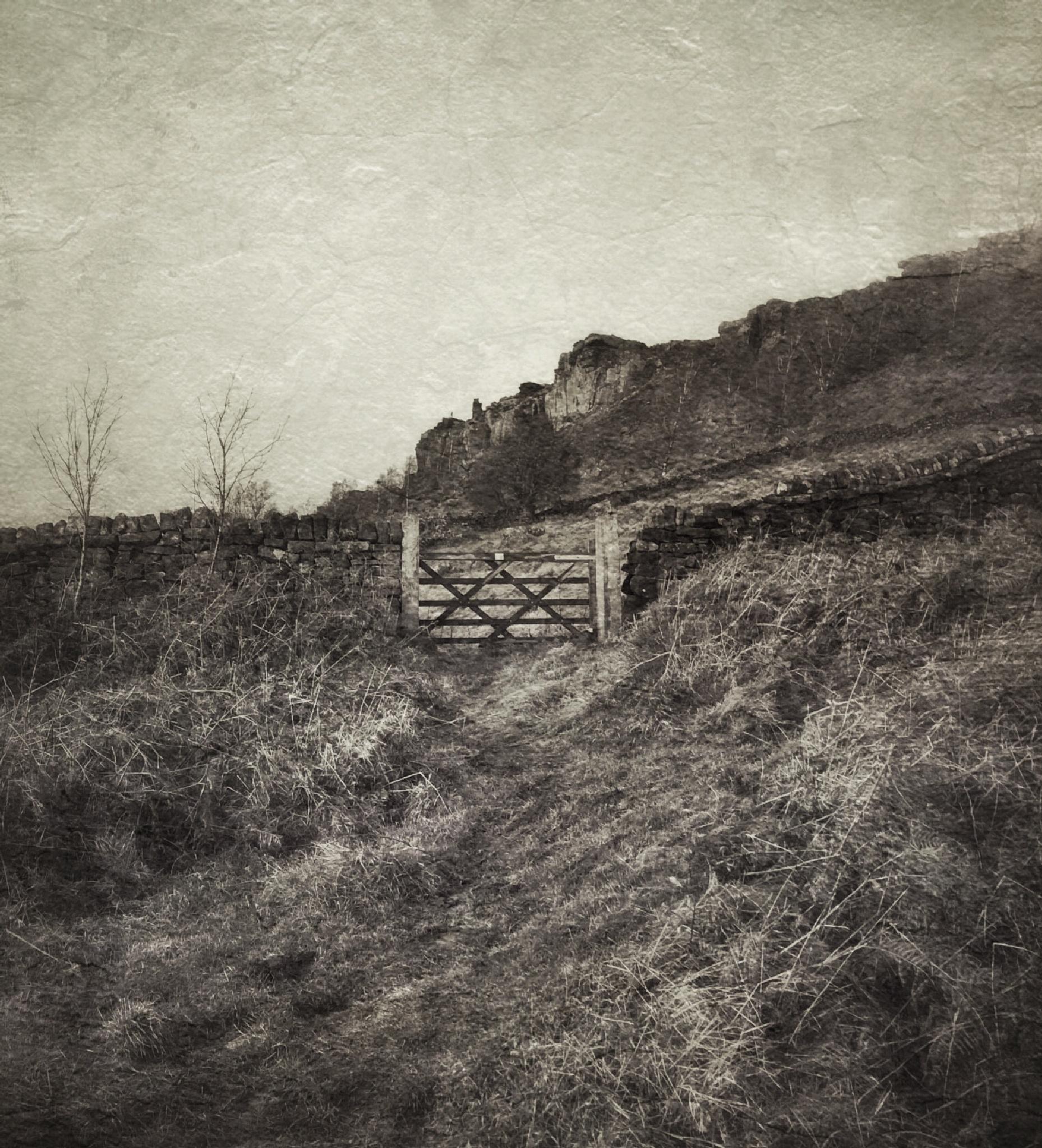 Gate to Curbar Edge by David Hawkes