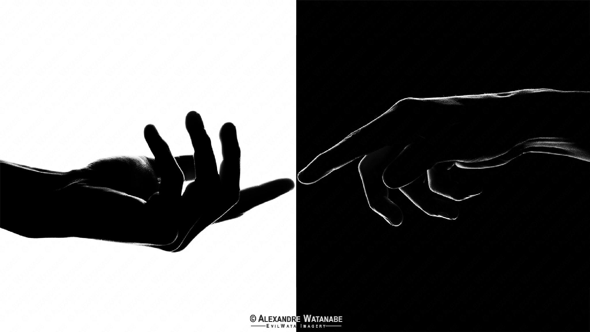 Yin Yang by Alexandre Watanabe
