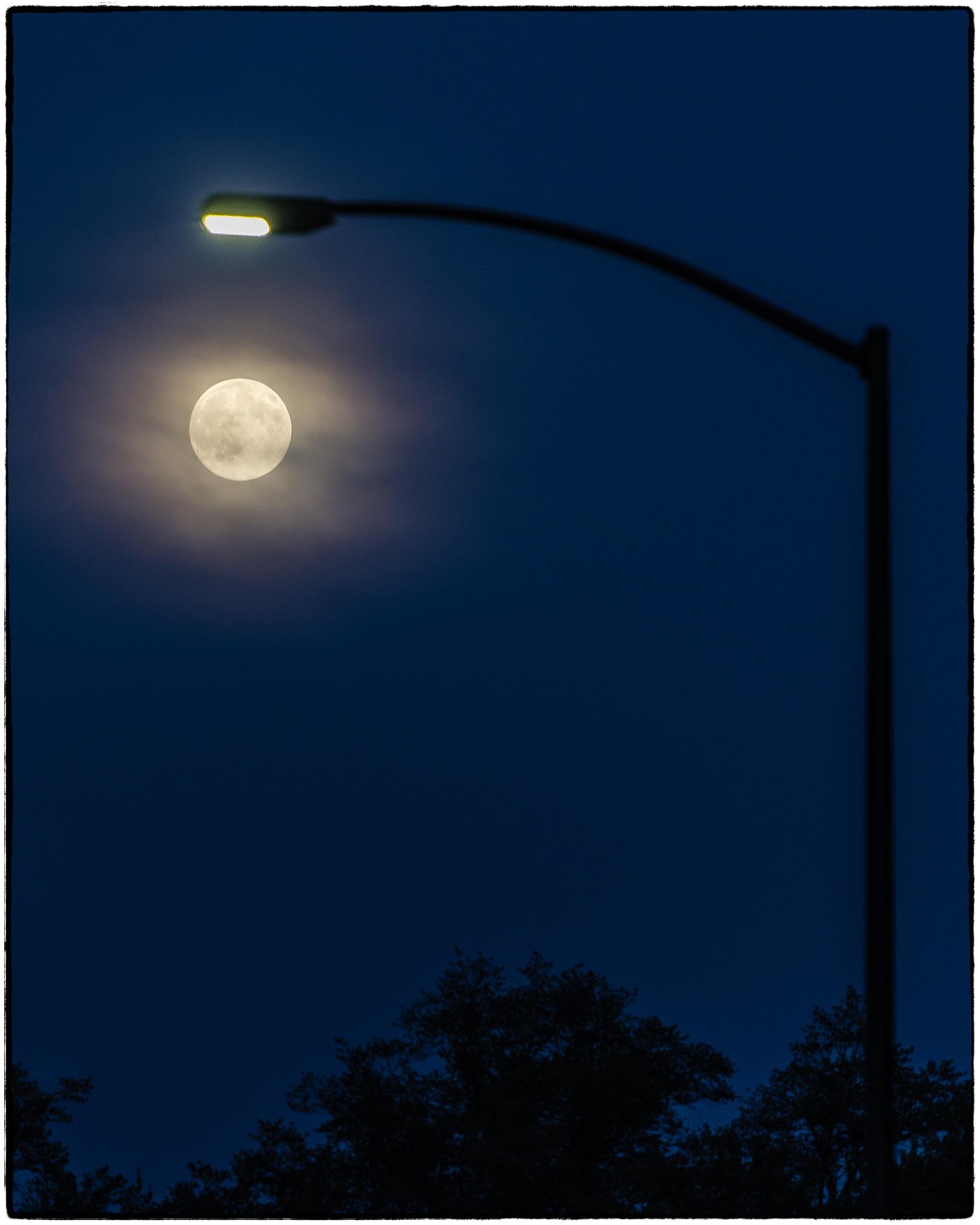 Moon / Light by Don Johnson