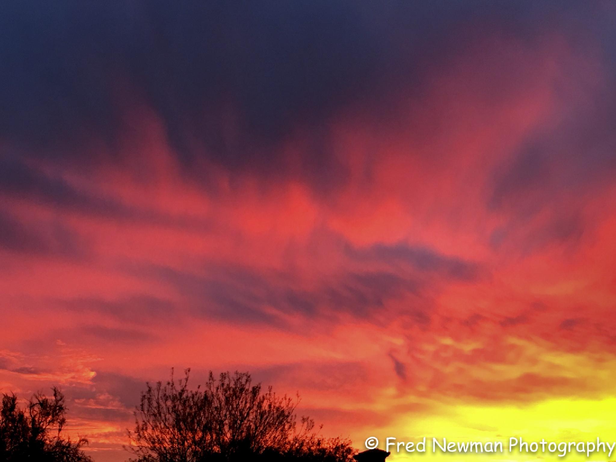 Arizona Sunset by FredNewman