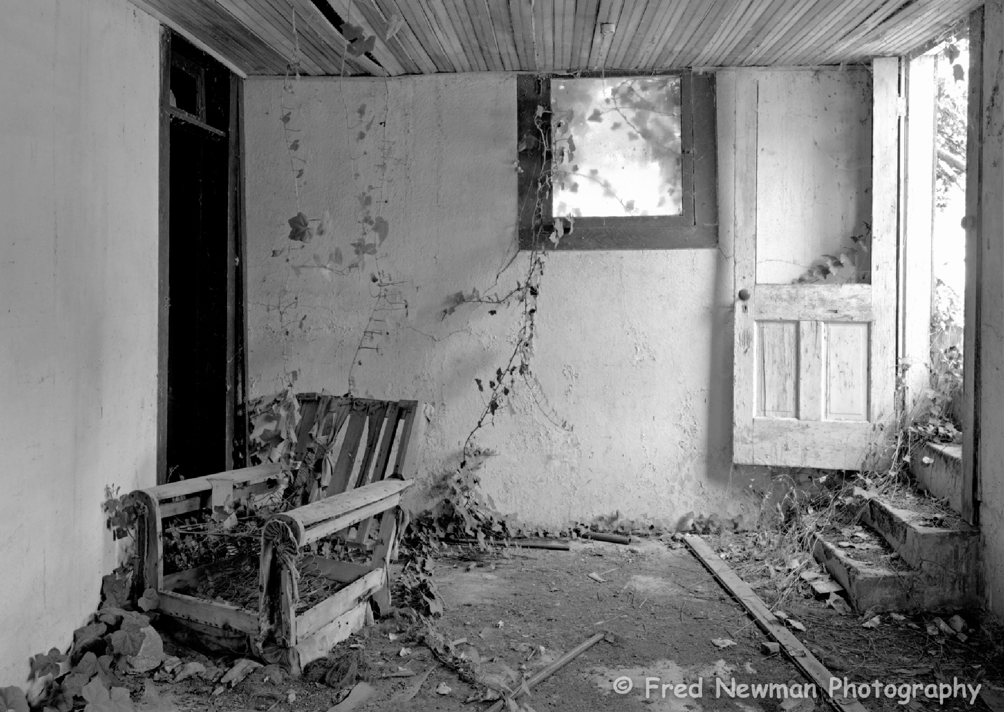The Old Easy Chair by FredNewman