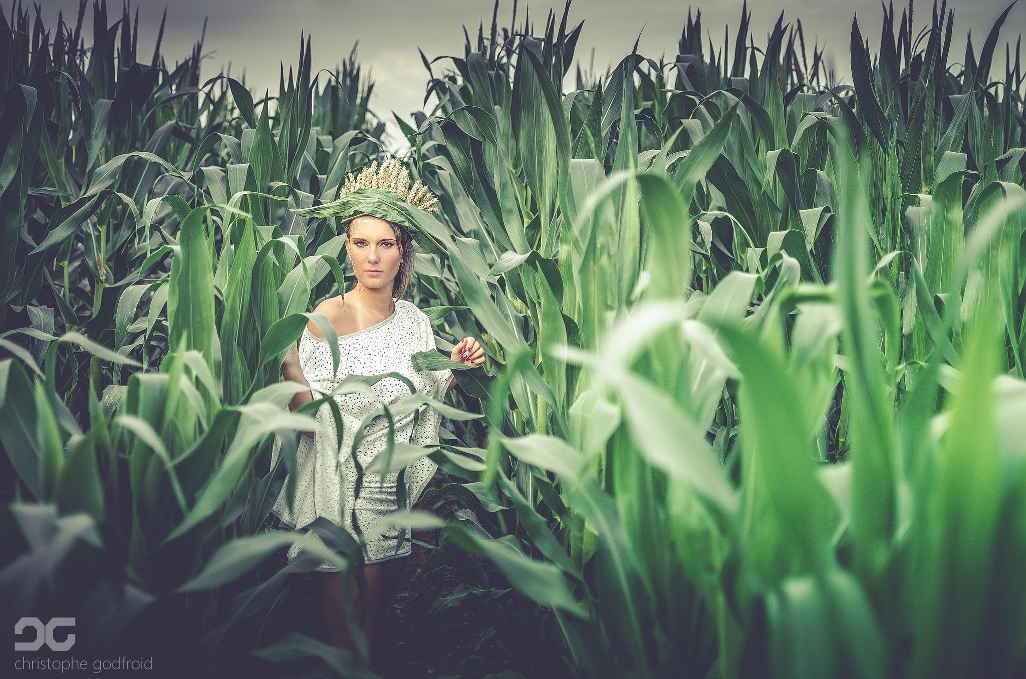 Queen of Corn by christophegodfroid