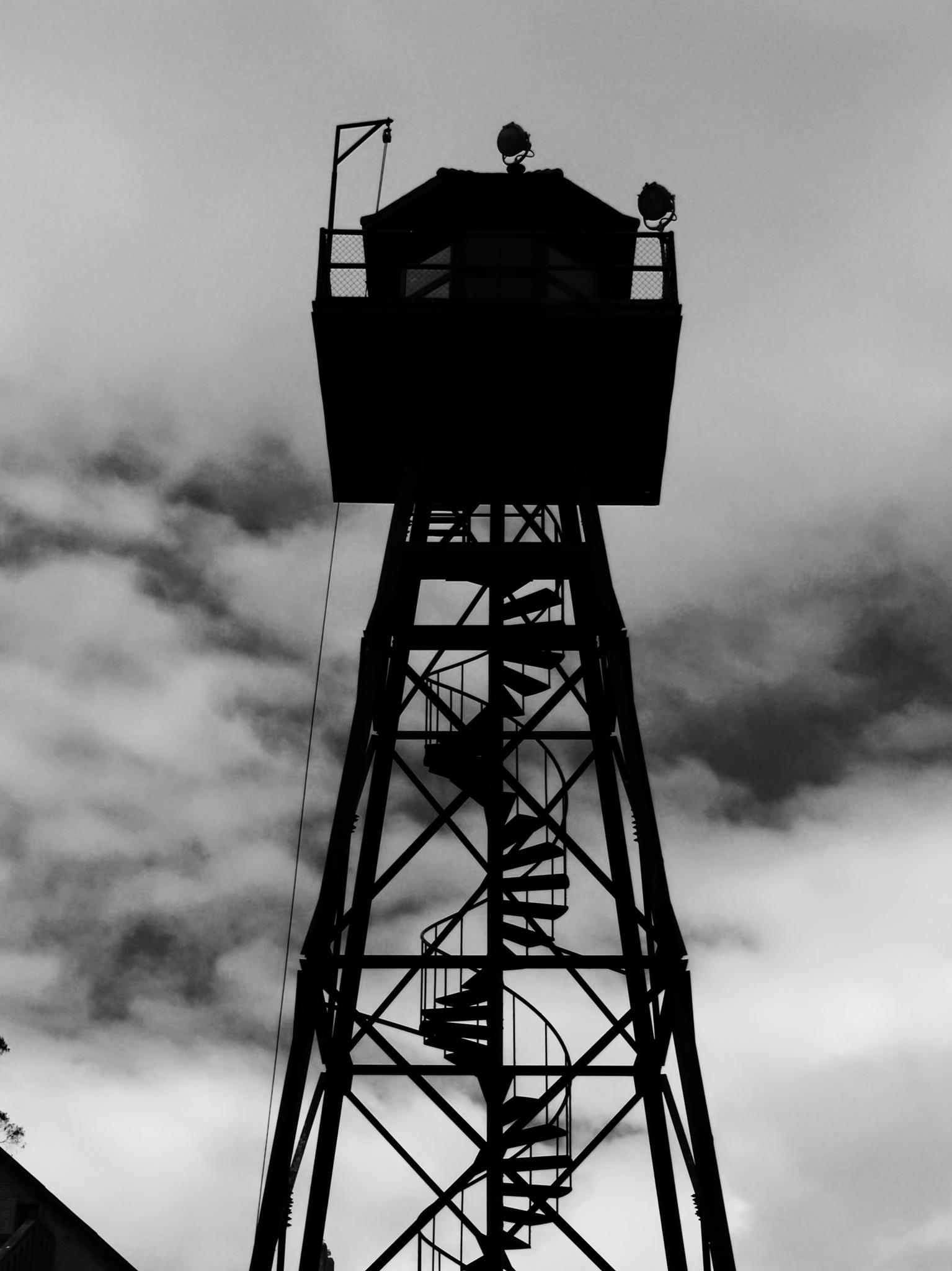 The Tower by Jody Davis