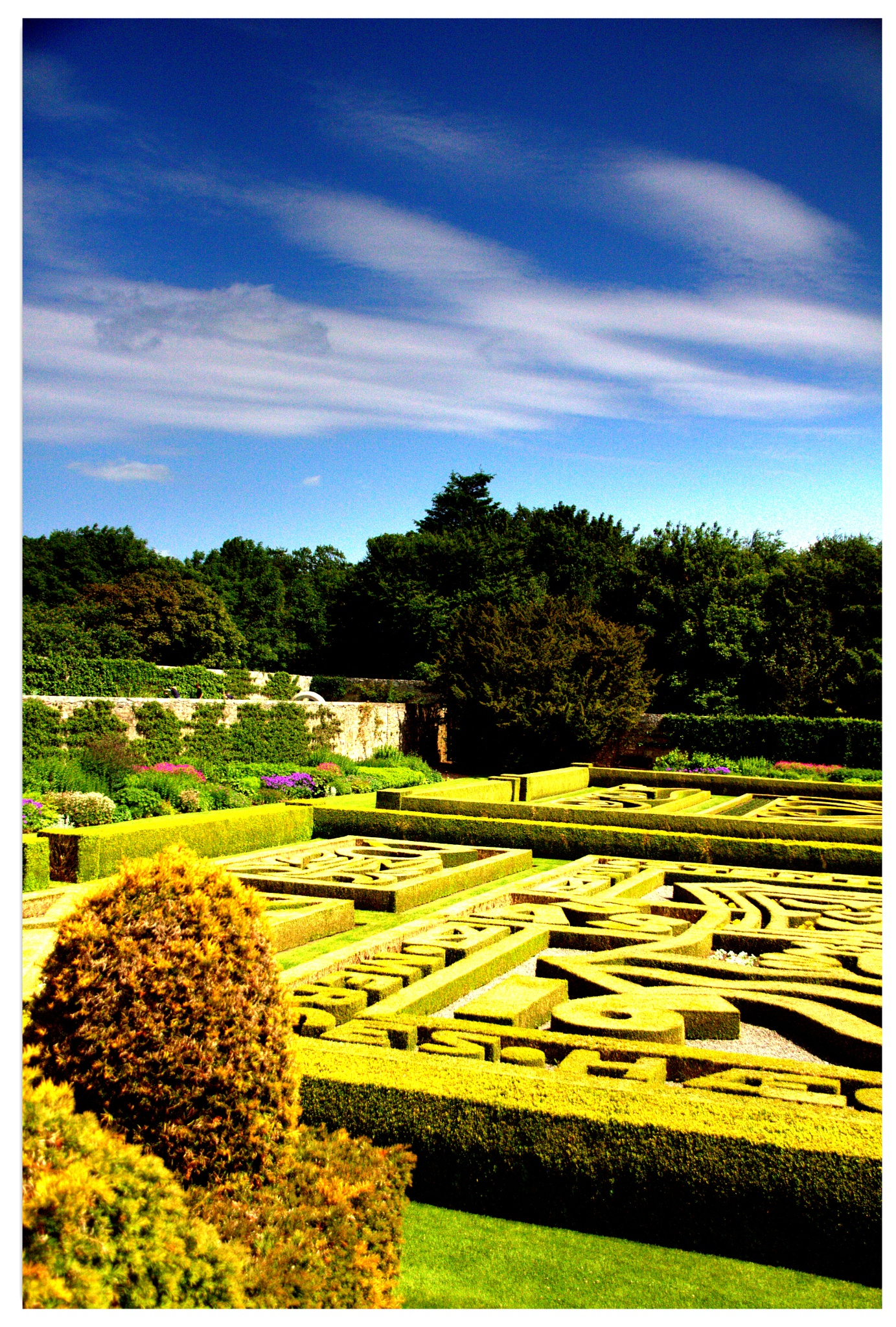 Pitmedden Gardens by Marf