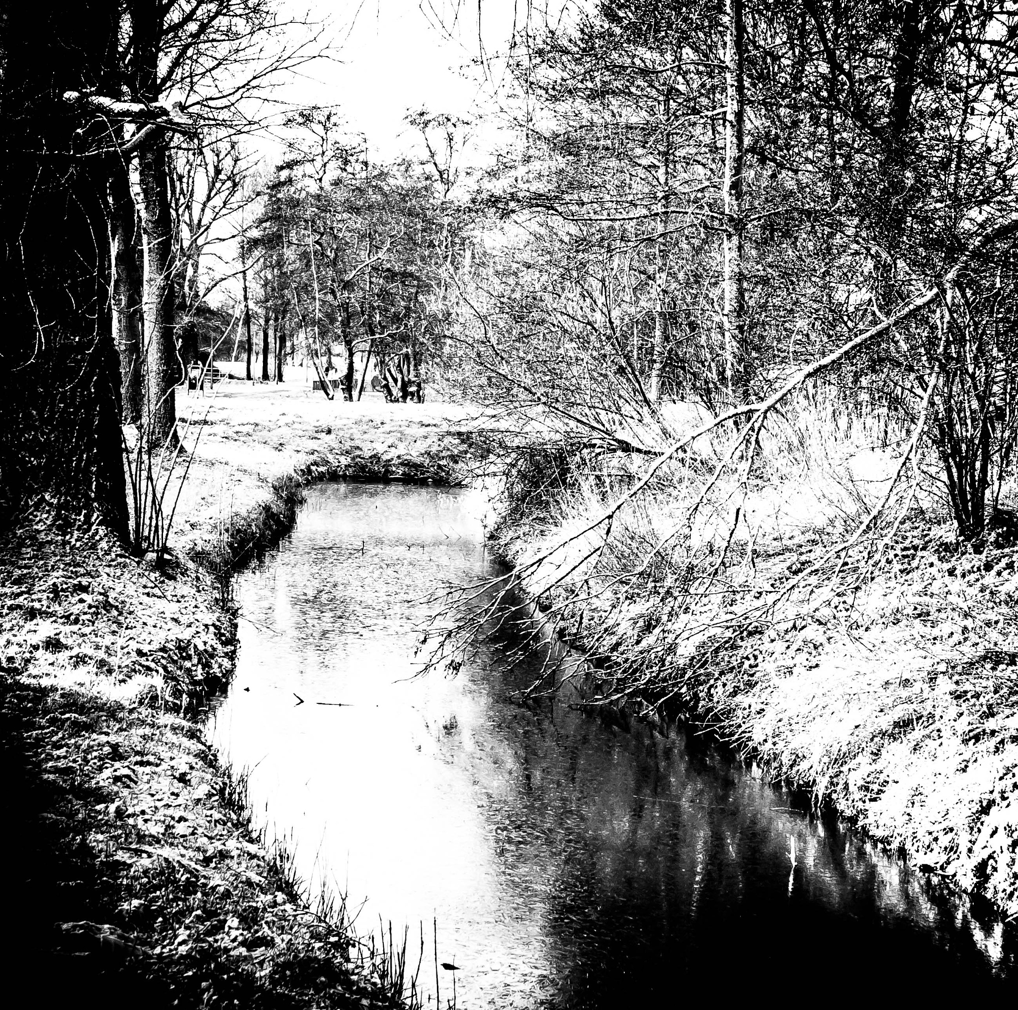 Winter in black and white by ilseBodewes