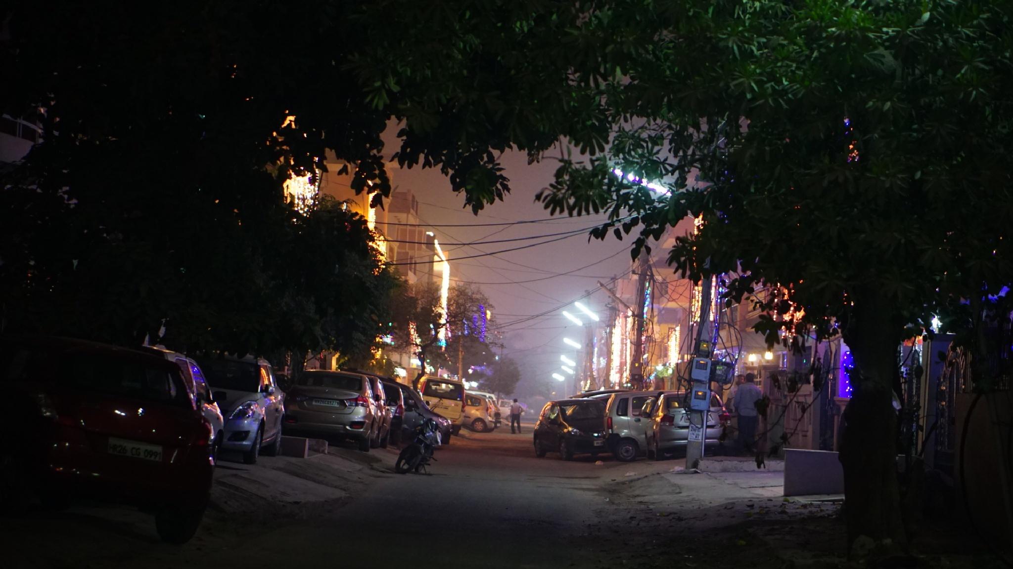 Street of India on diwali  by Nancy Kant